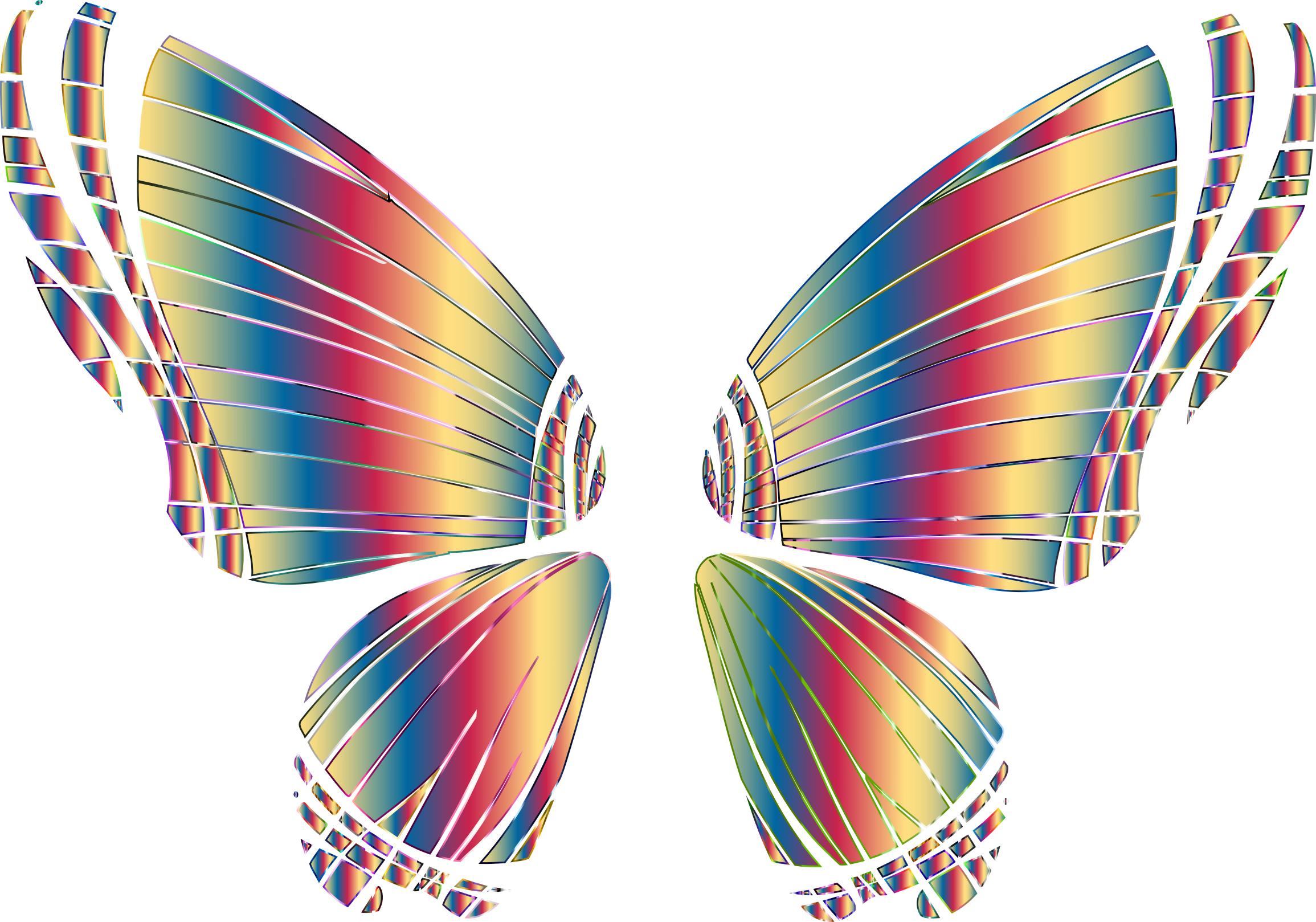 RGB Butterfly Silhouette 10 16 No Background by GDJ