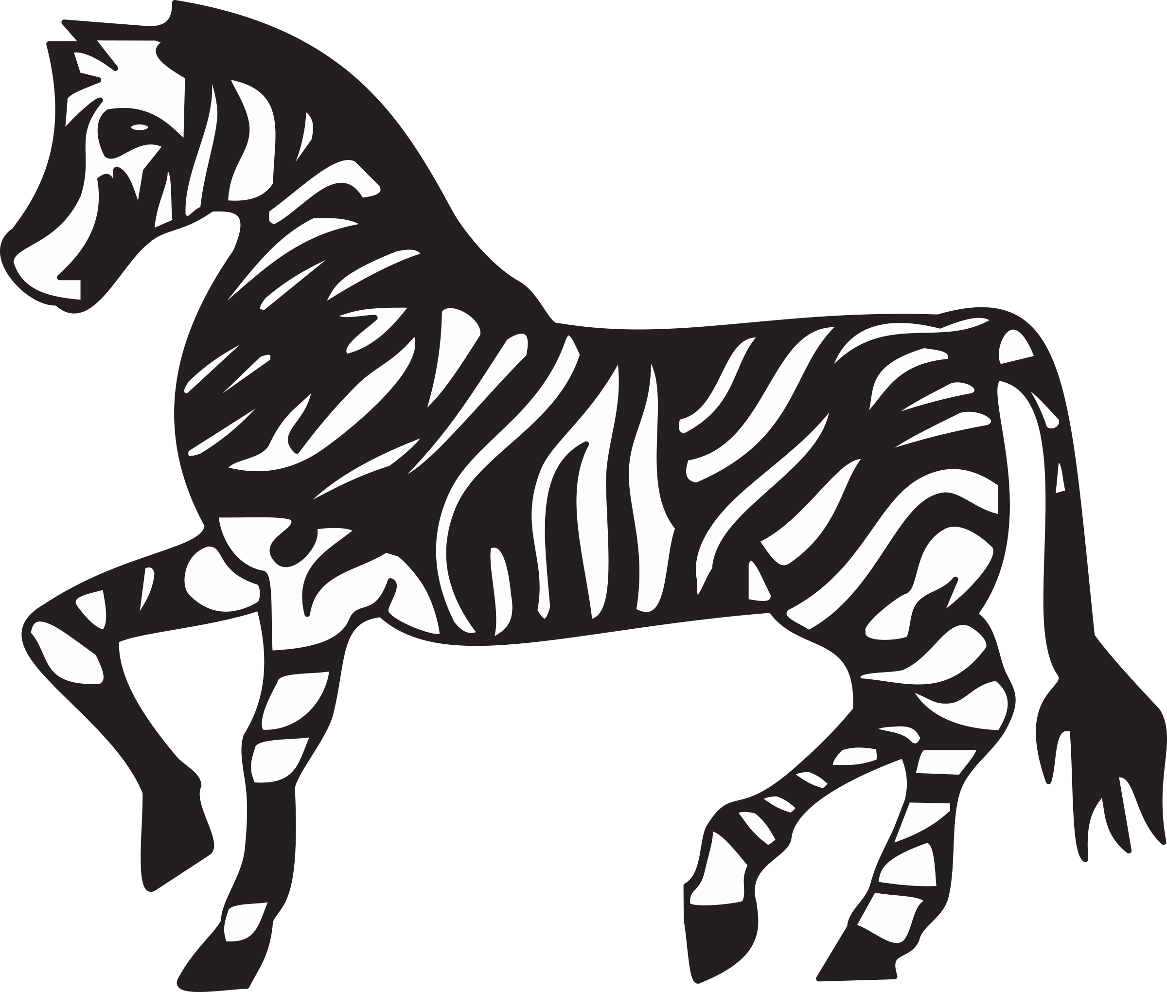 Zebra by Firkin