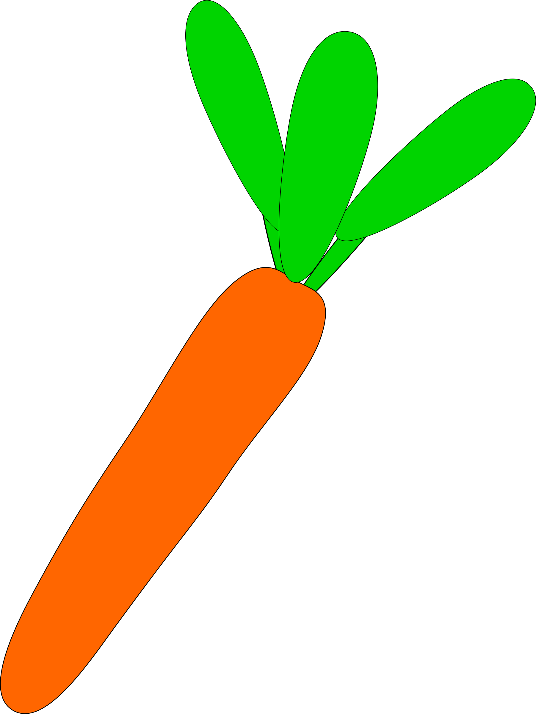 carrot by Machovka