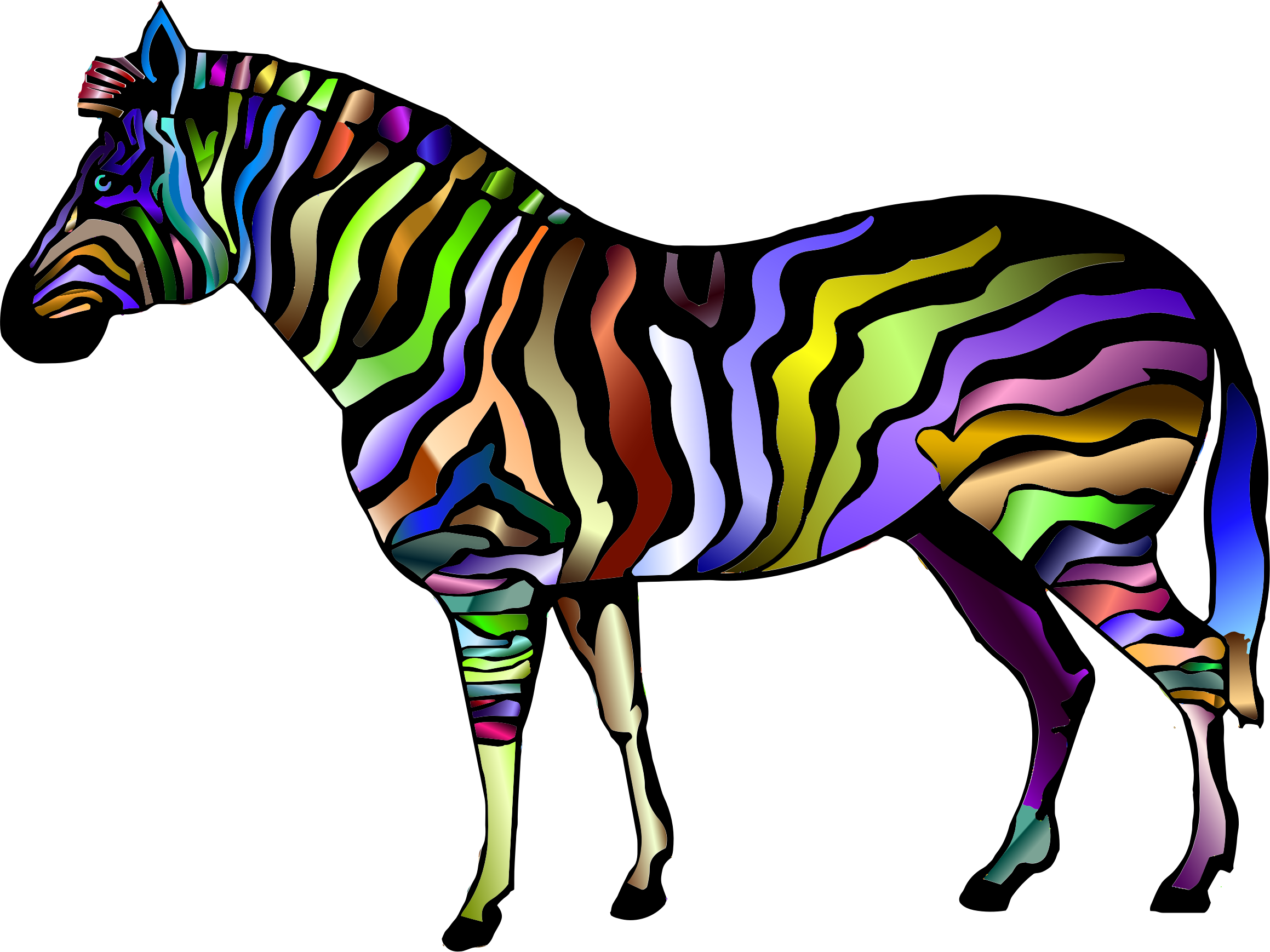 Prismatic Zebra 2 by GDJ