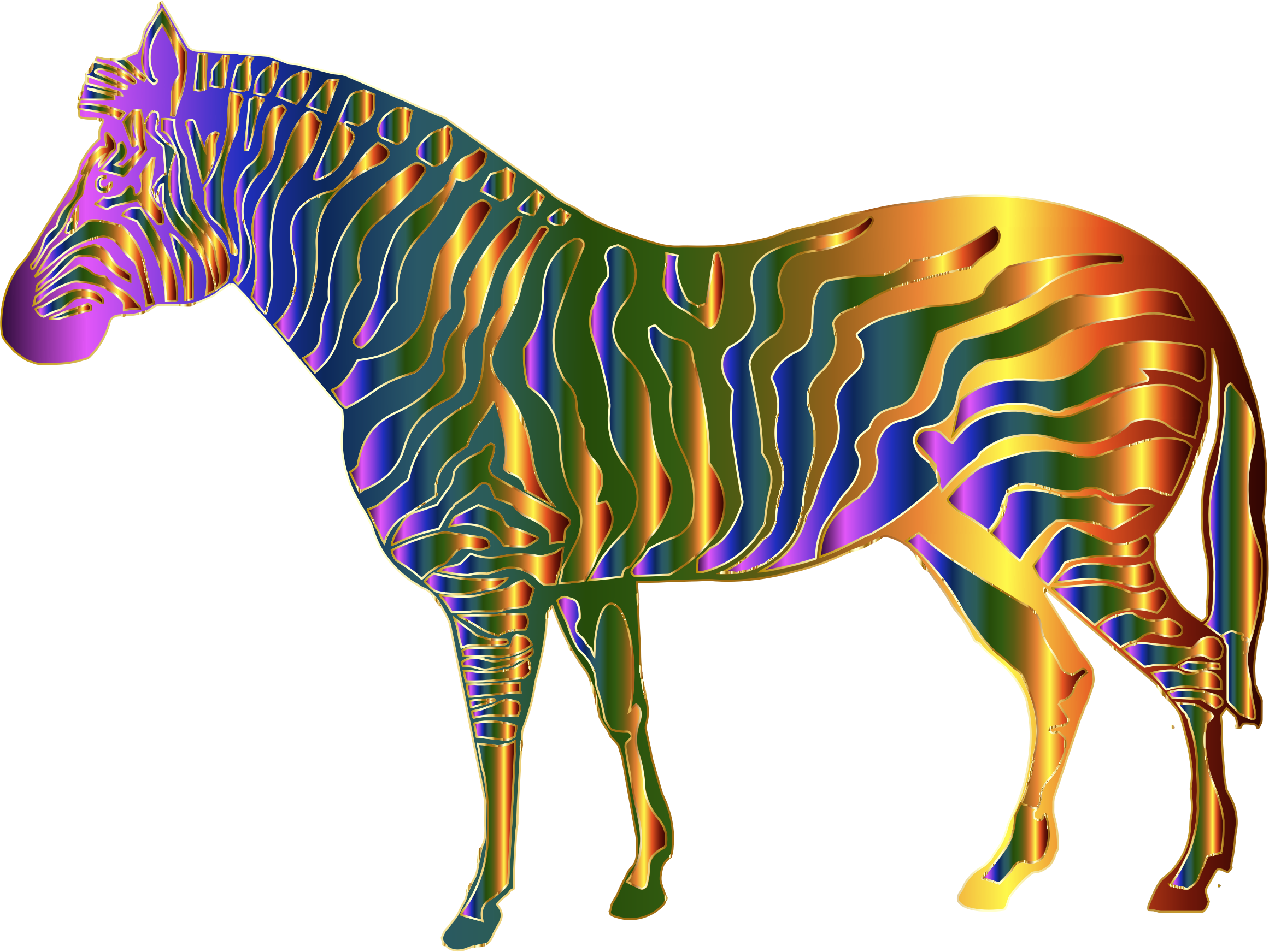 Chromatic Zebra by GDJ