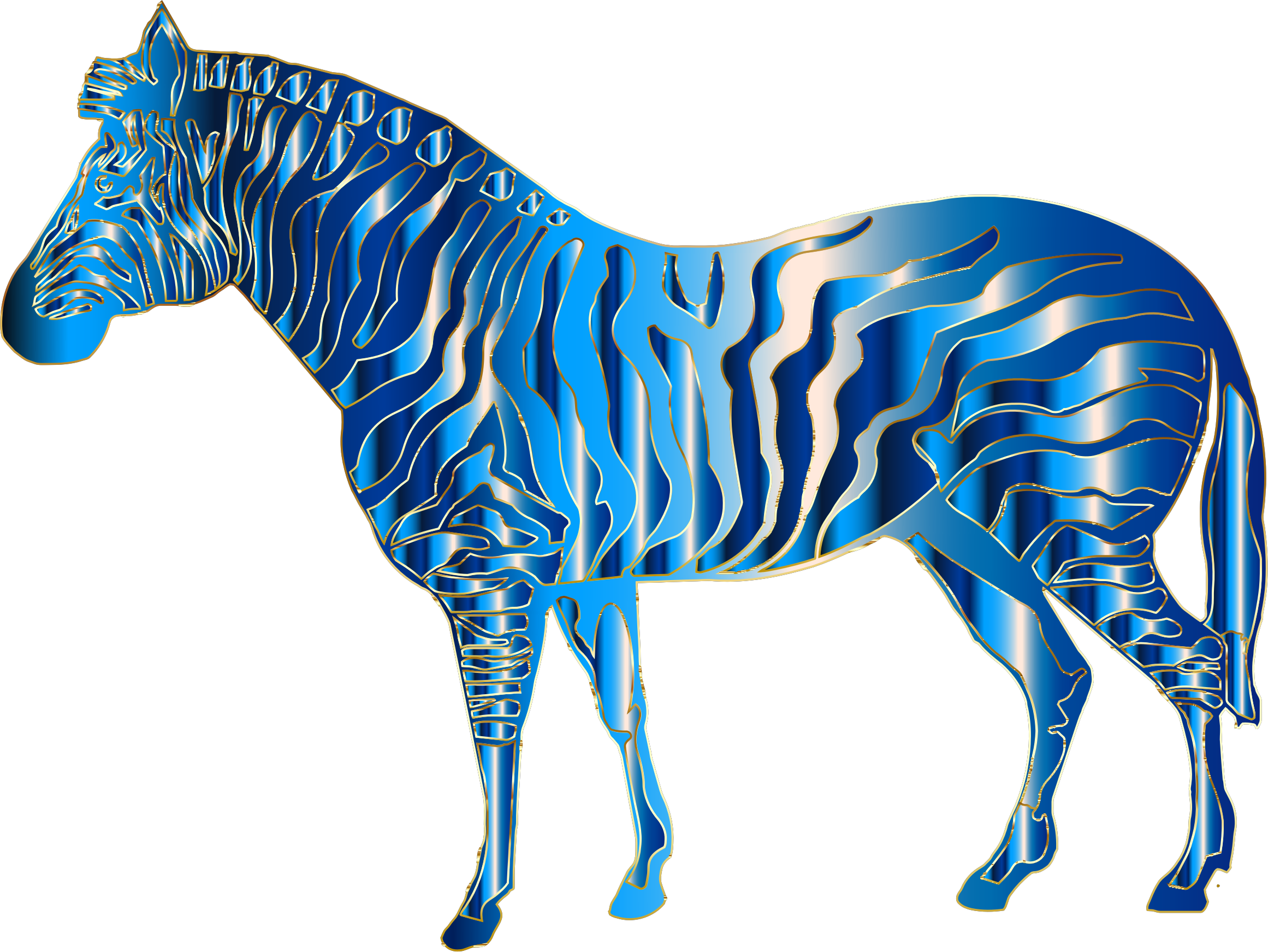 Aquamarine  Zebra by GDJ