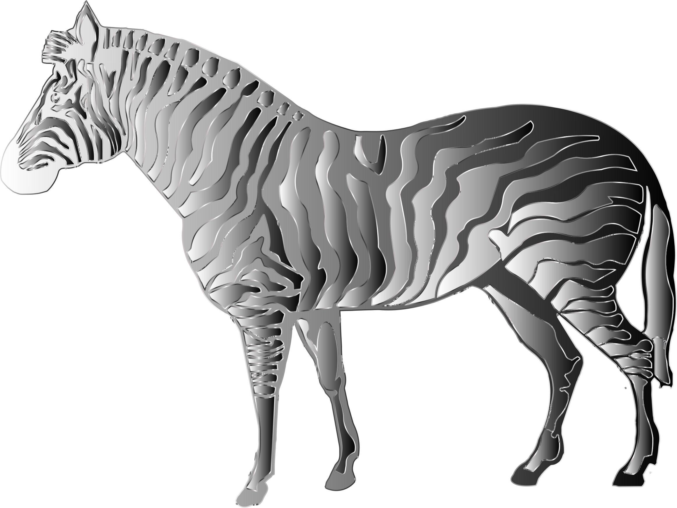 Monochrome Zebra by GDJ