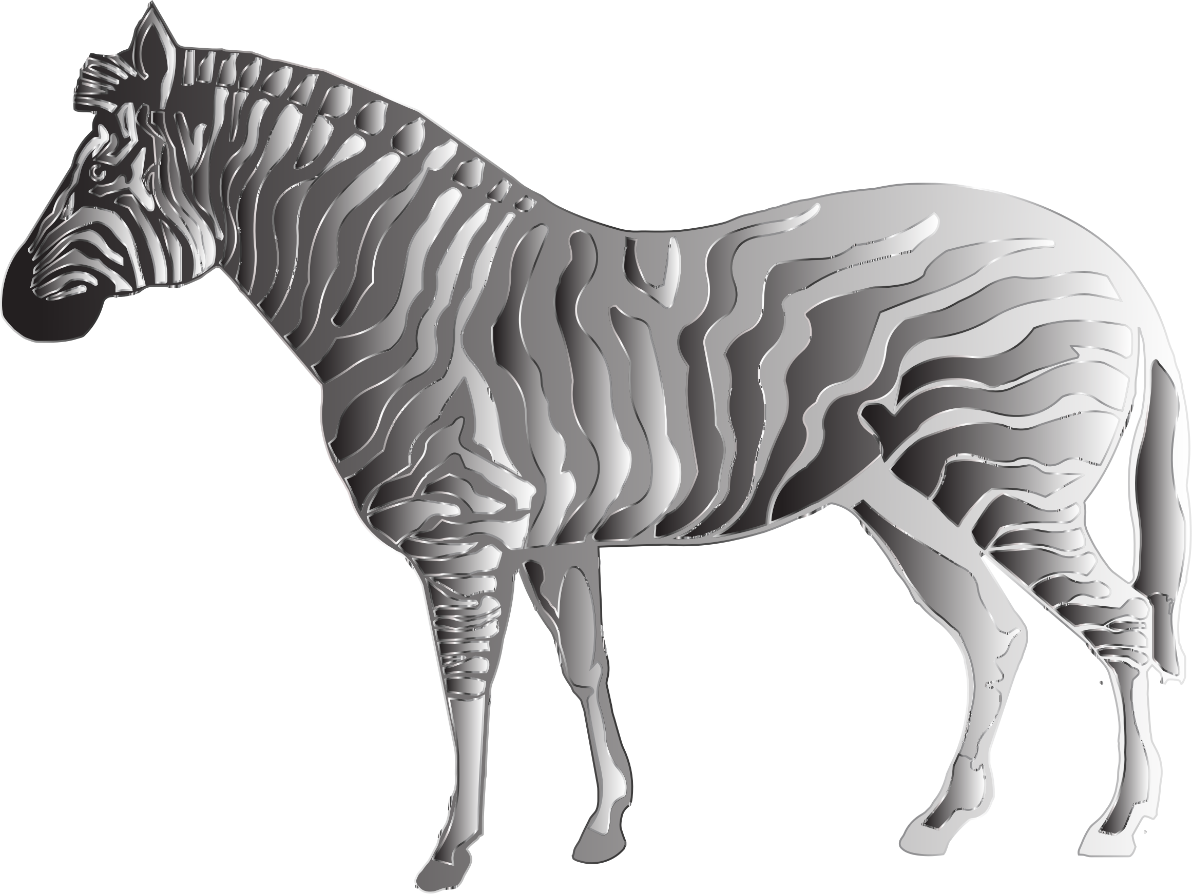 Monochrome Zebra 2 by GDJ