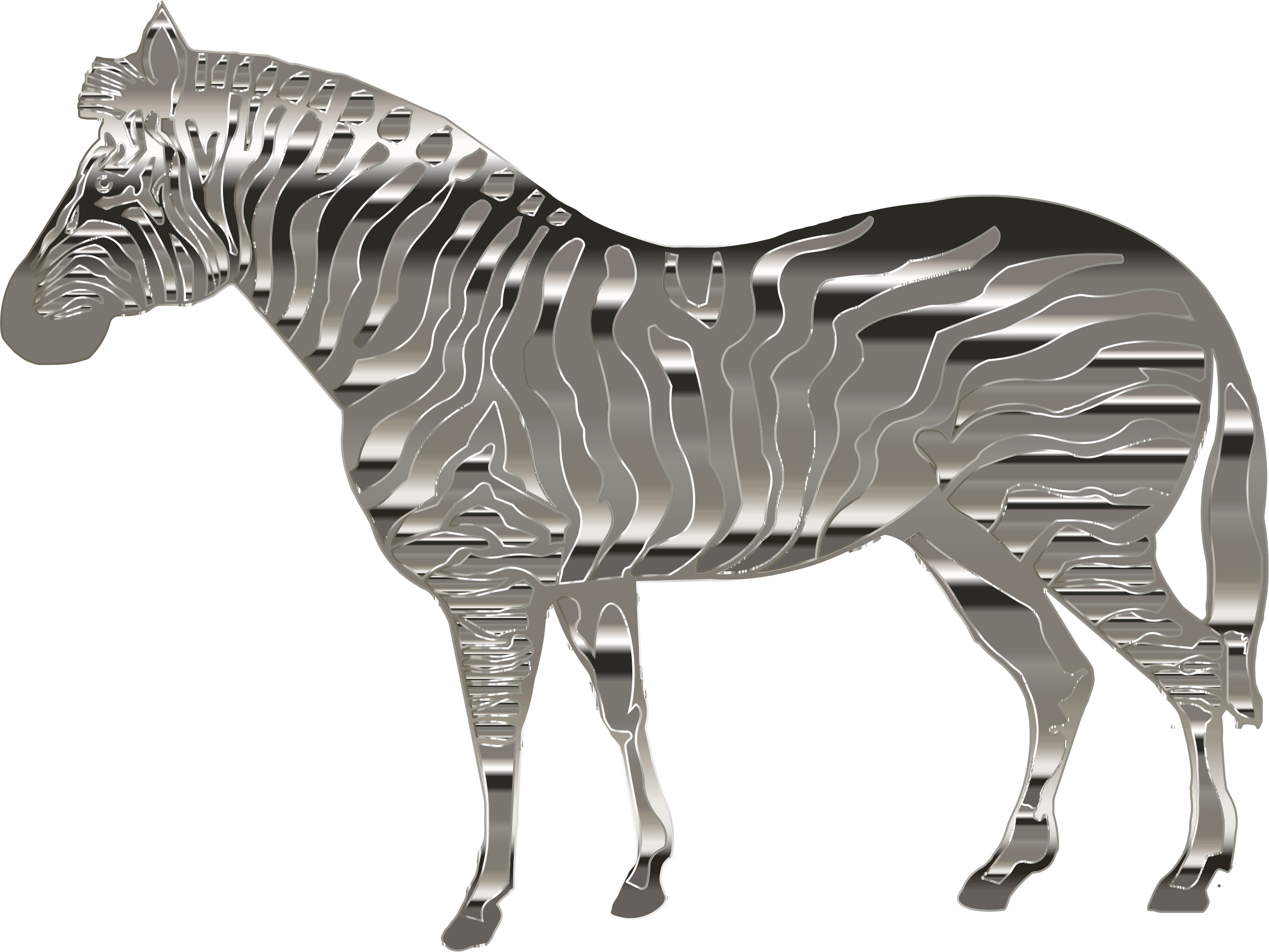Chrome Zebra by GDJ