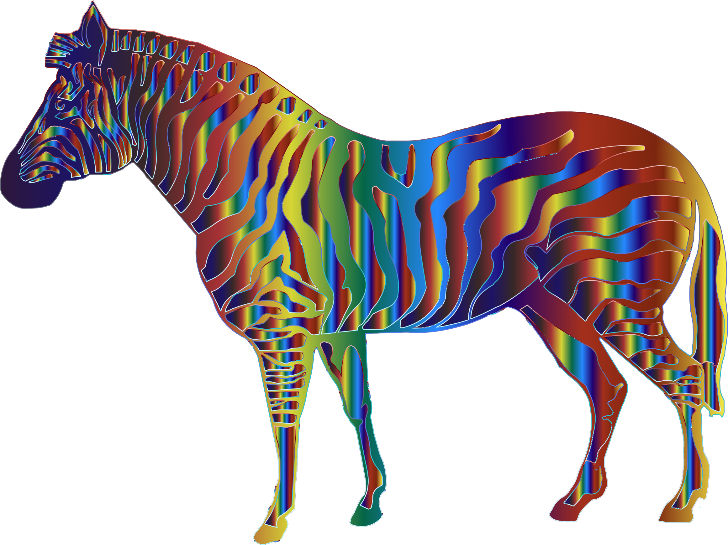 Iridescent Zebra by GDJ