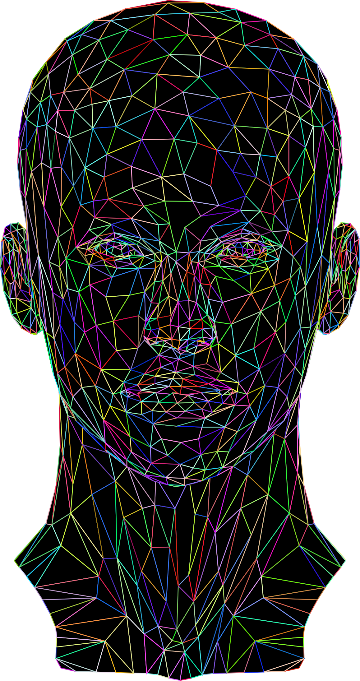 Prismatic Low Poly Female Head Wireframe by GDJ