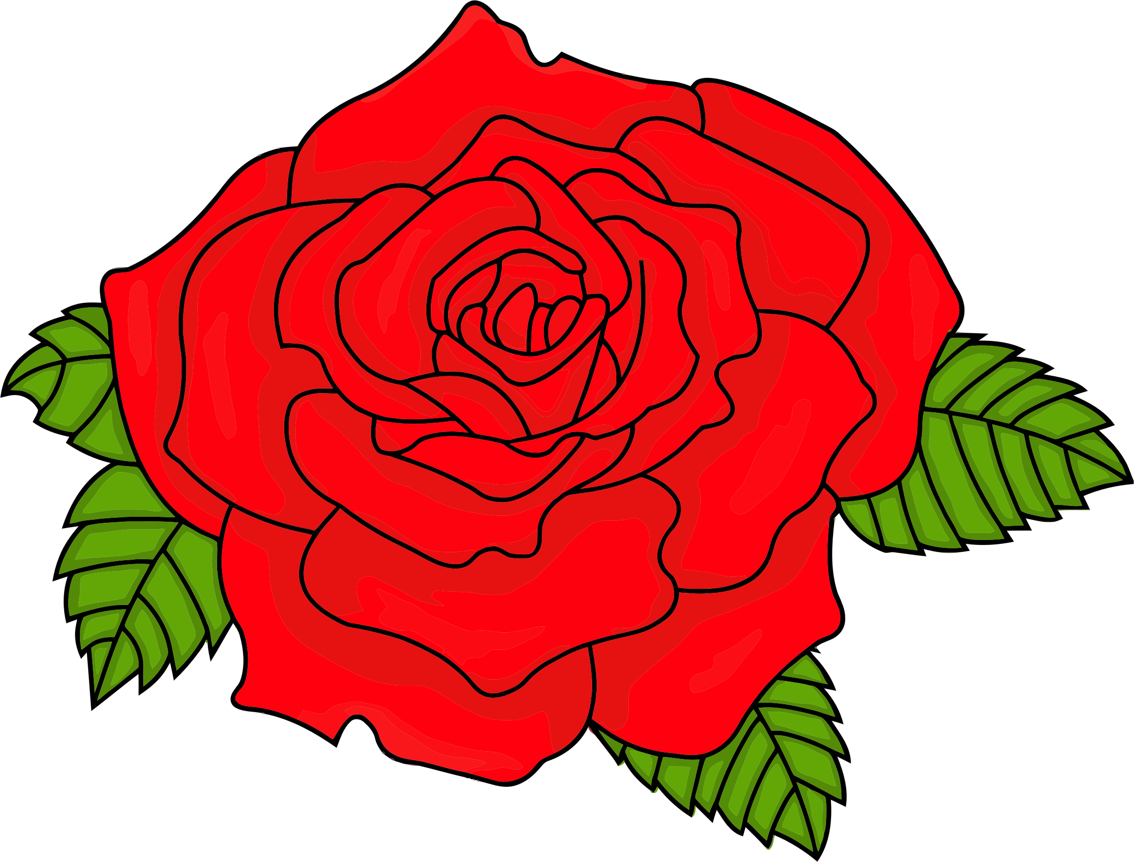 Shaded Red Rose by GDJ