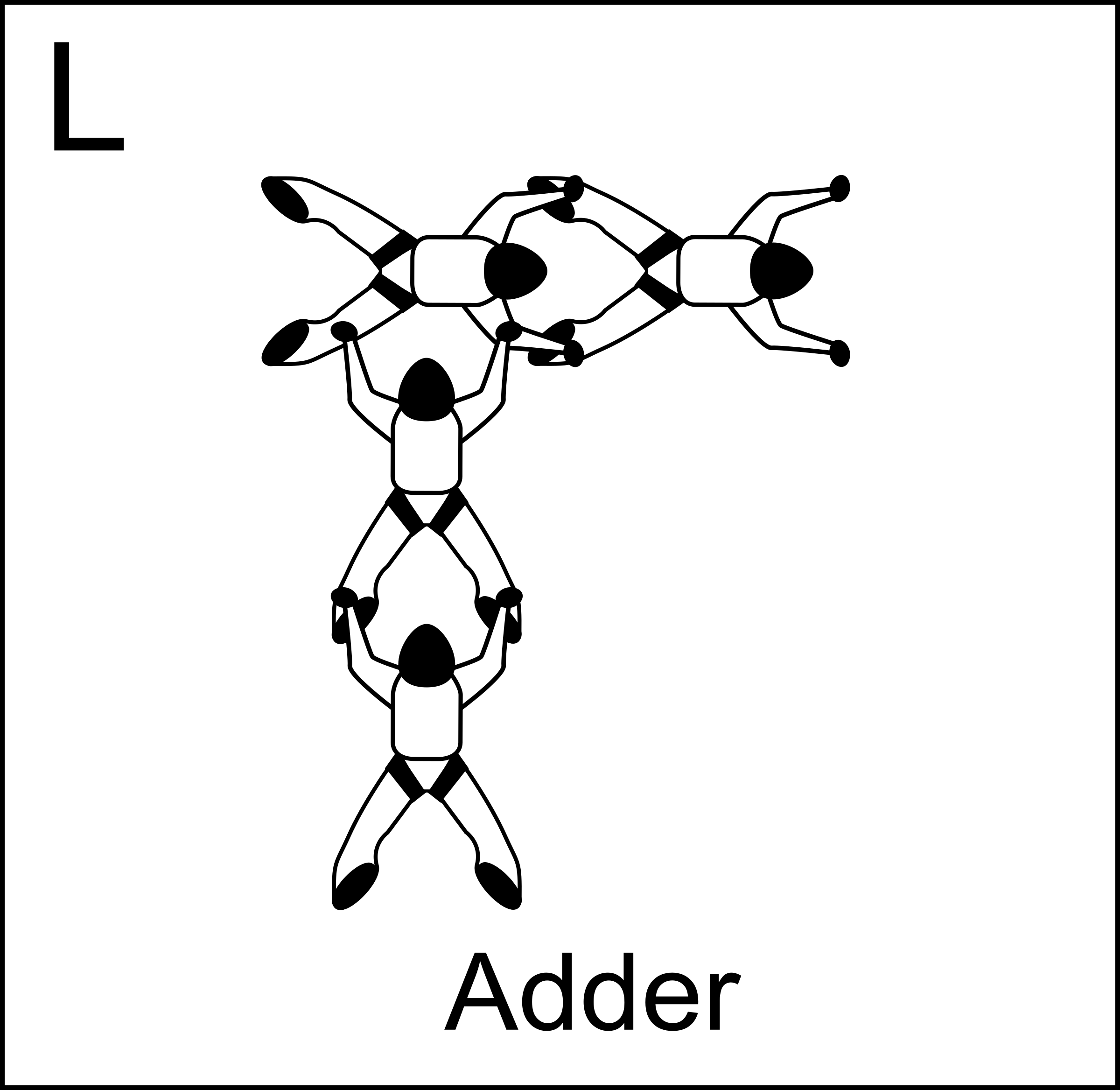 Figure L - Adder, Vol relatif à 4, Formation Skydiving 4-Way by Fanfan