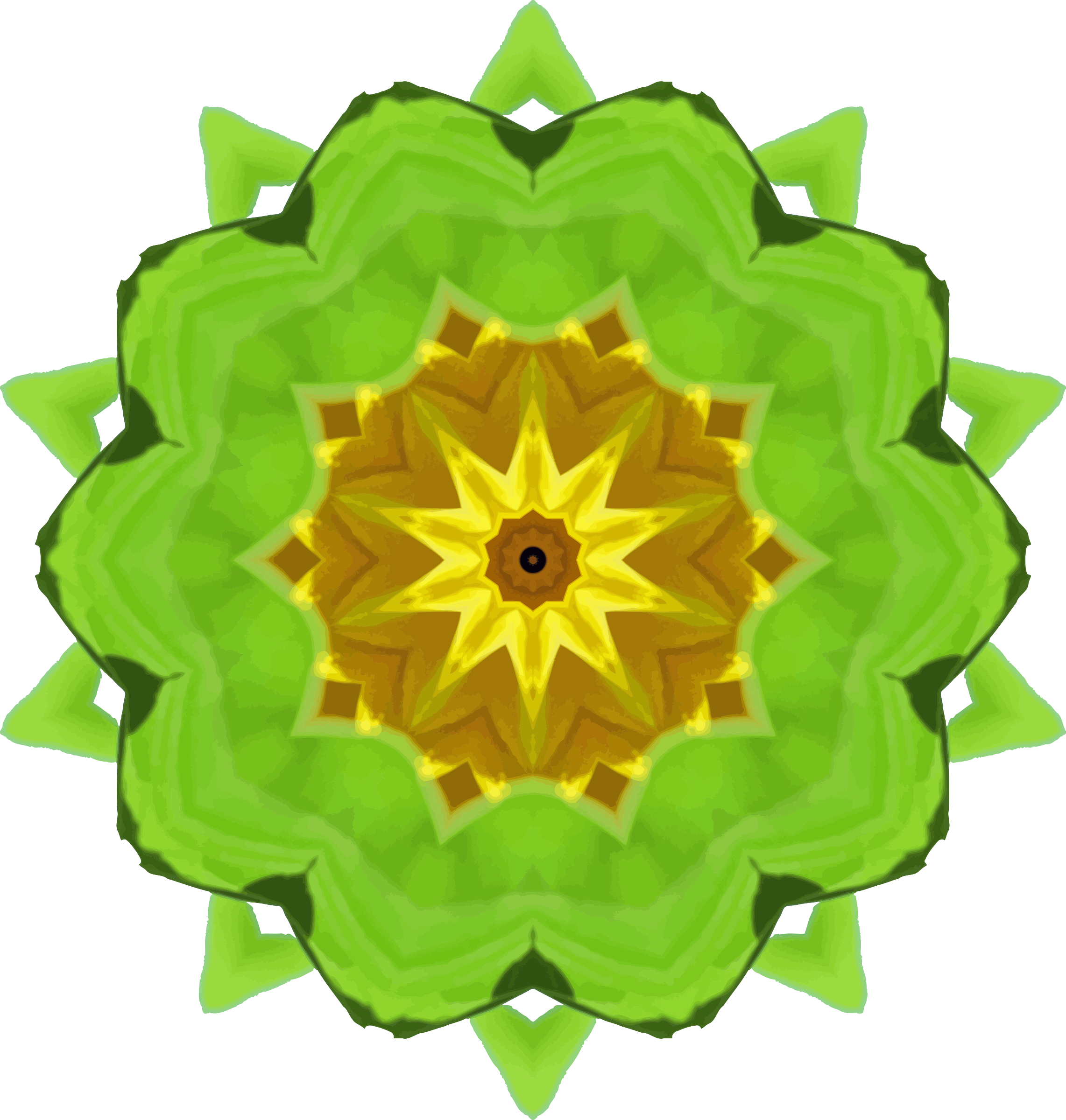 Sunflower kaleidoscope 7 by Firkin