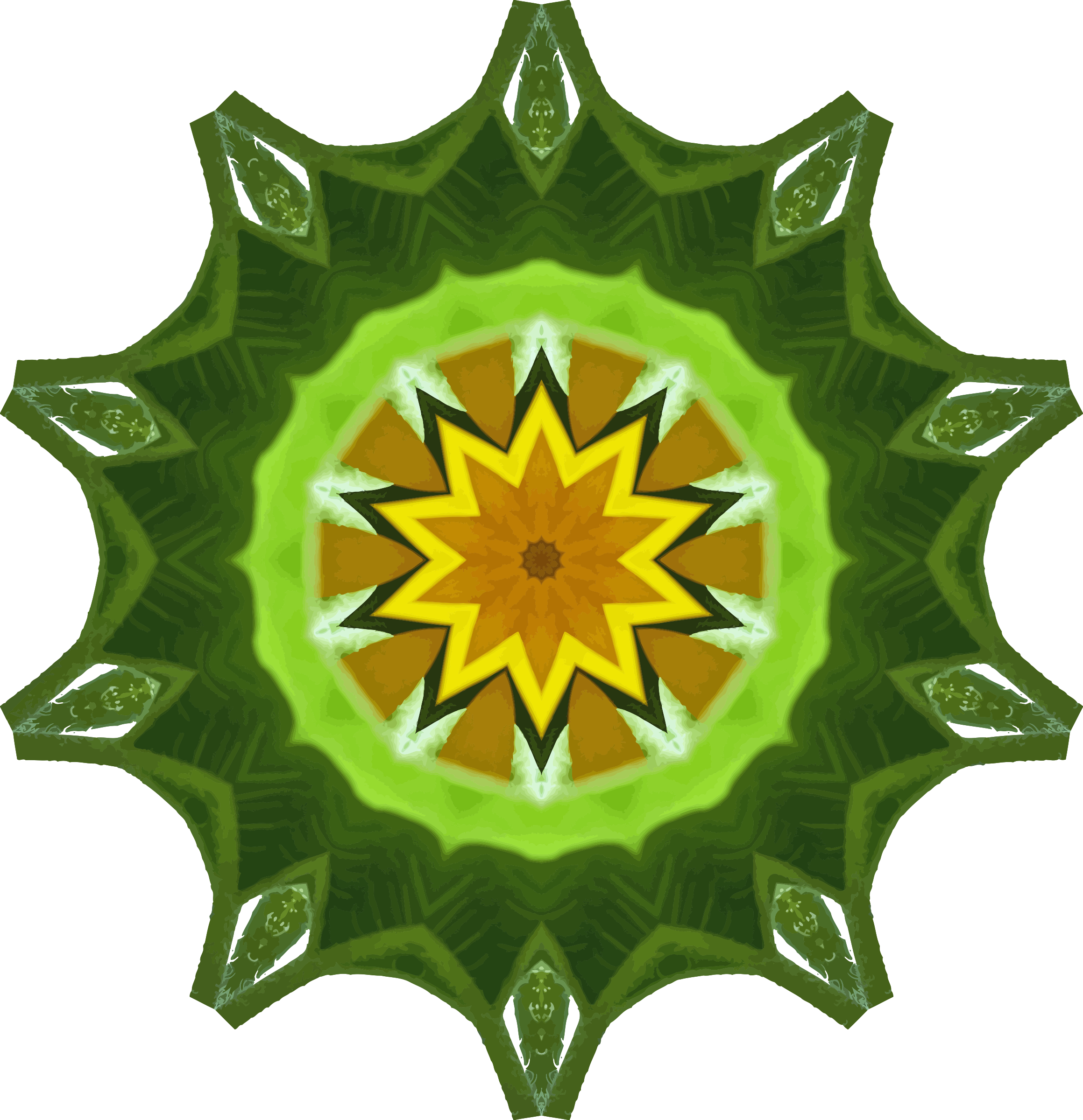 Sunflower kaleidoscope 9 by Firkin
