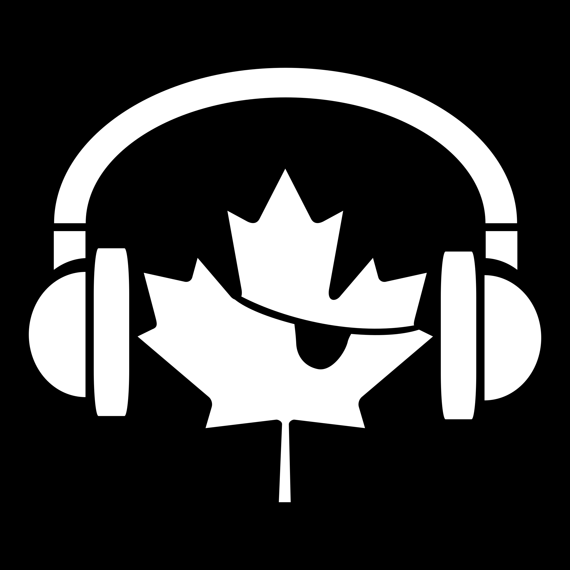 Music Pirate of Canada by seize1three