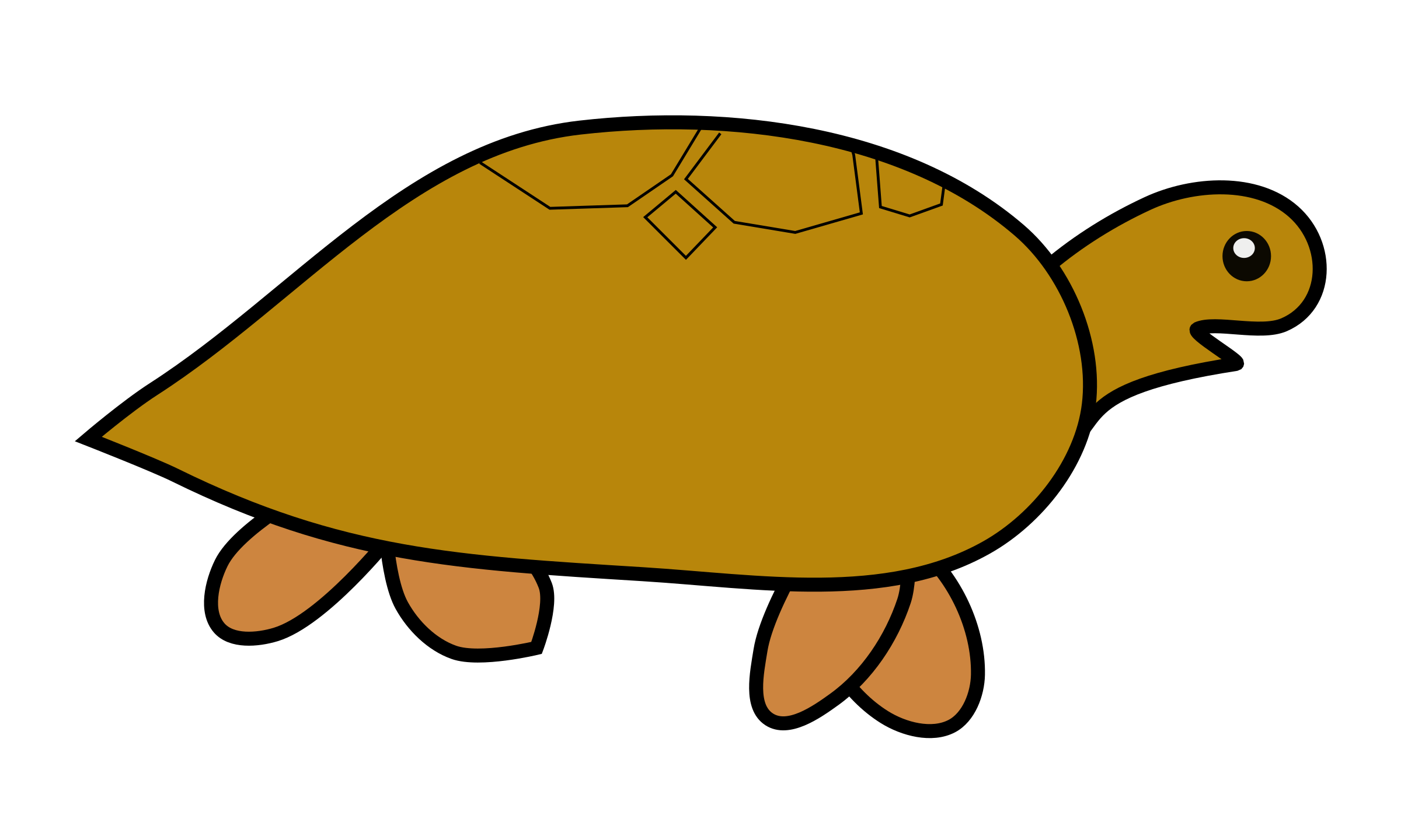 turtle by poonsab