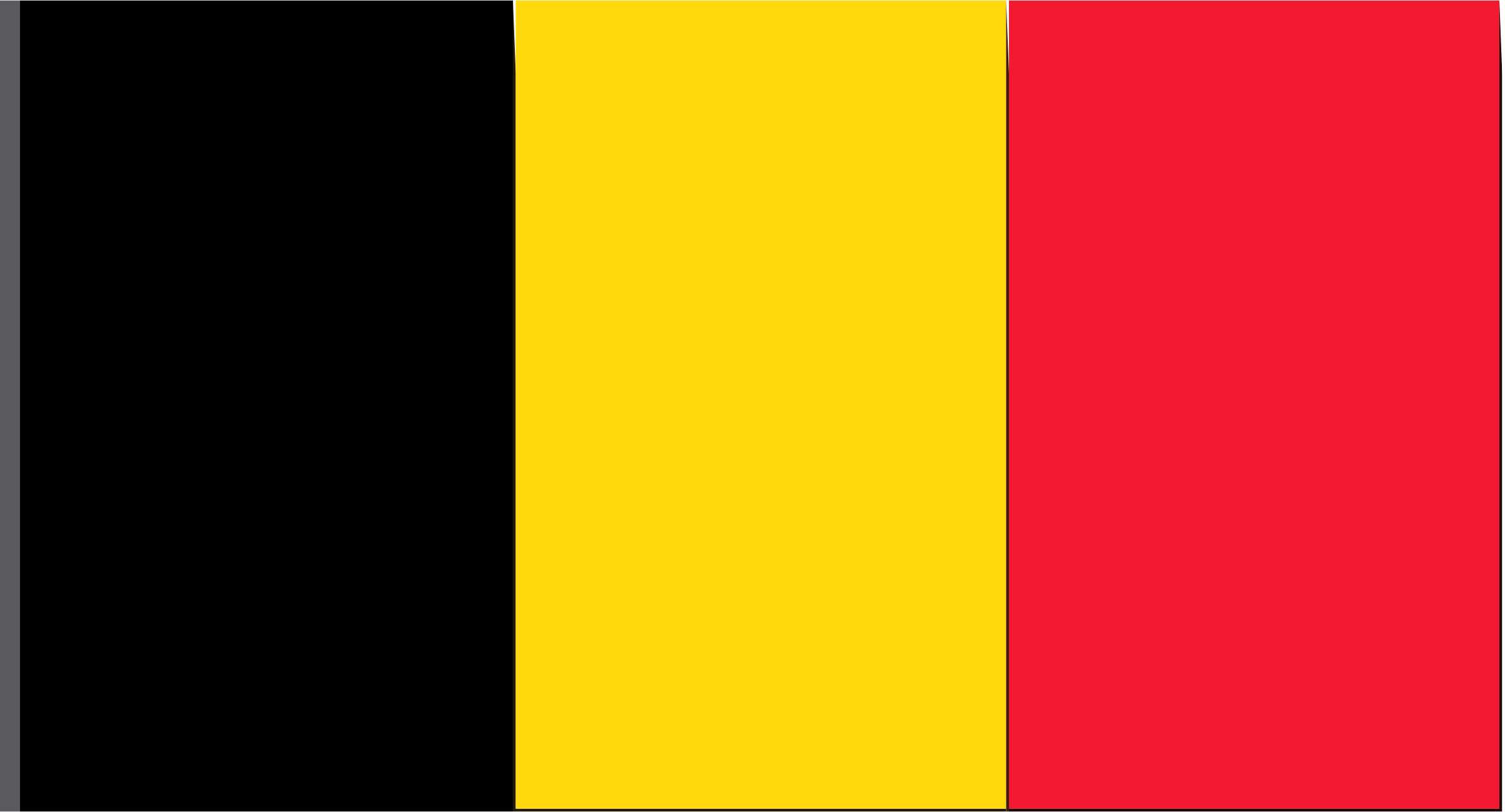 Flag of Belguim by Joesph