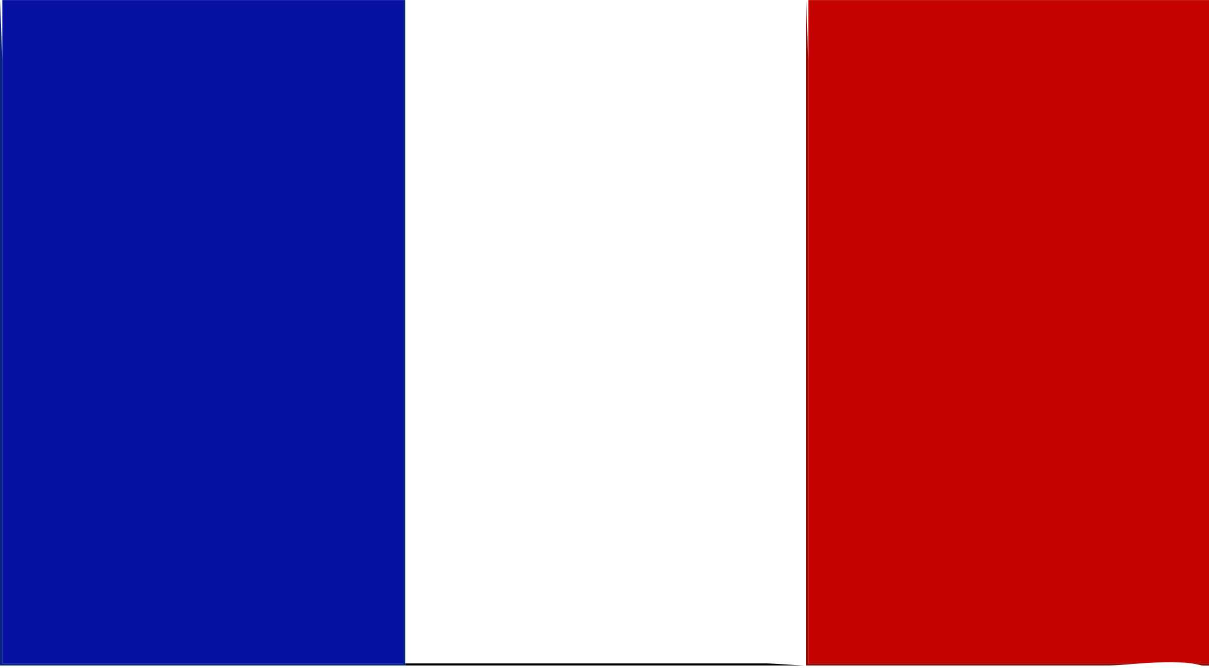 Flag of France by Joesph