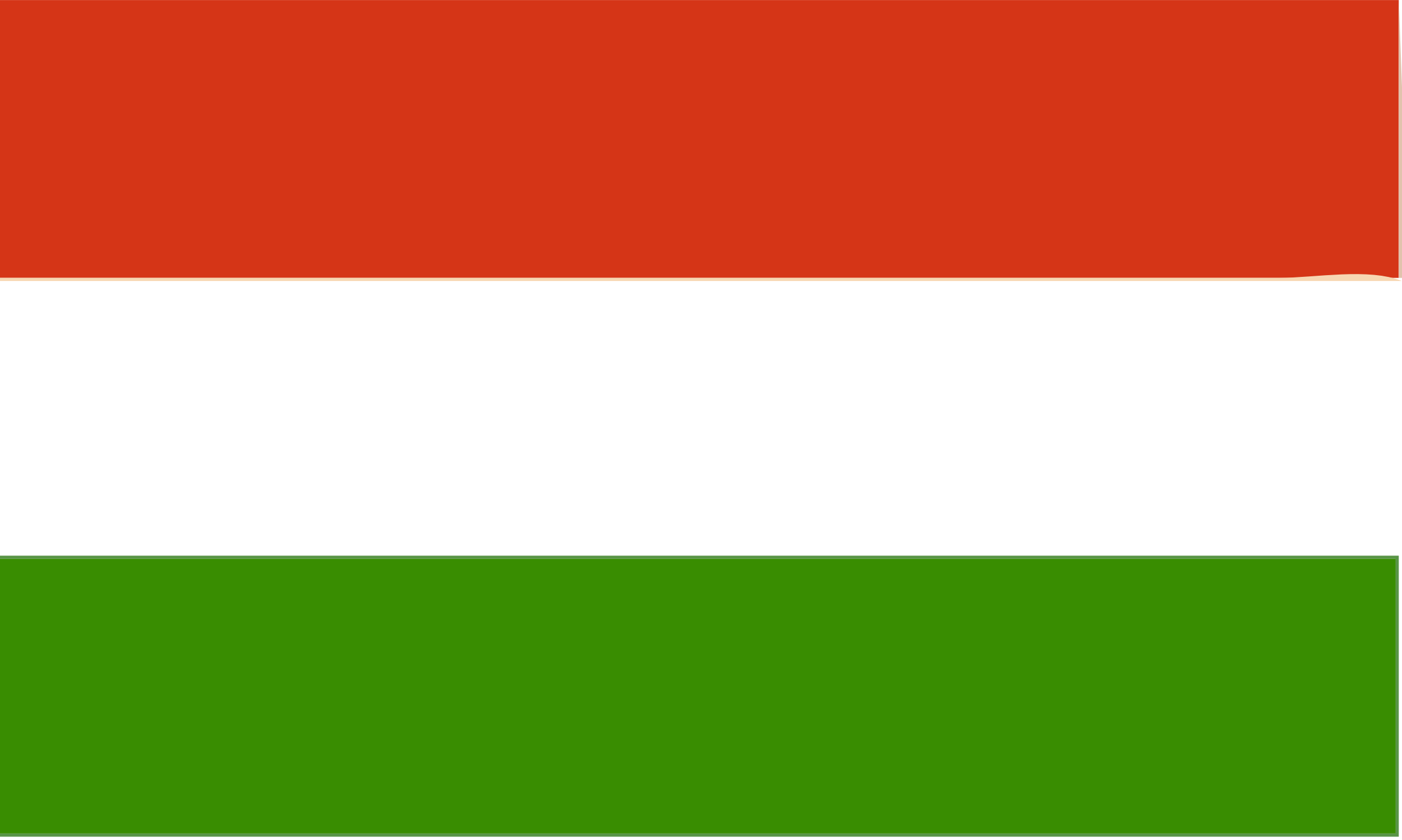 Flag of Hungary by Joesph