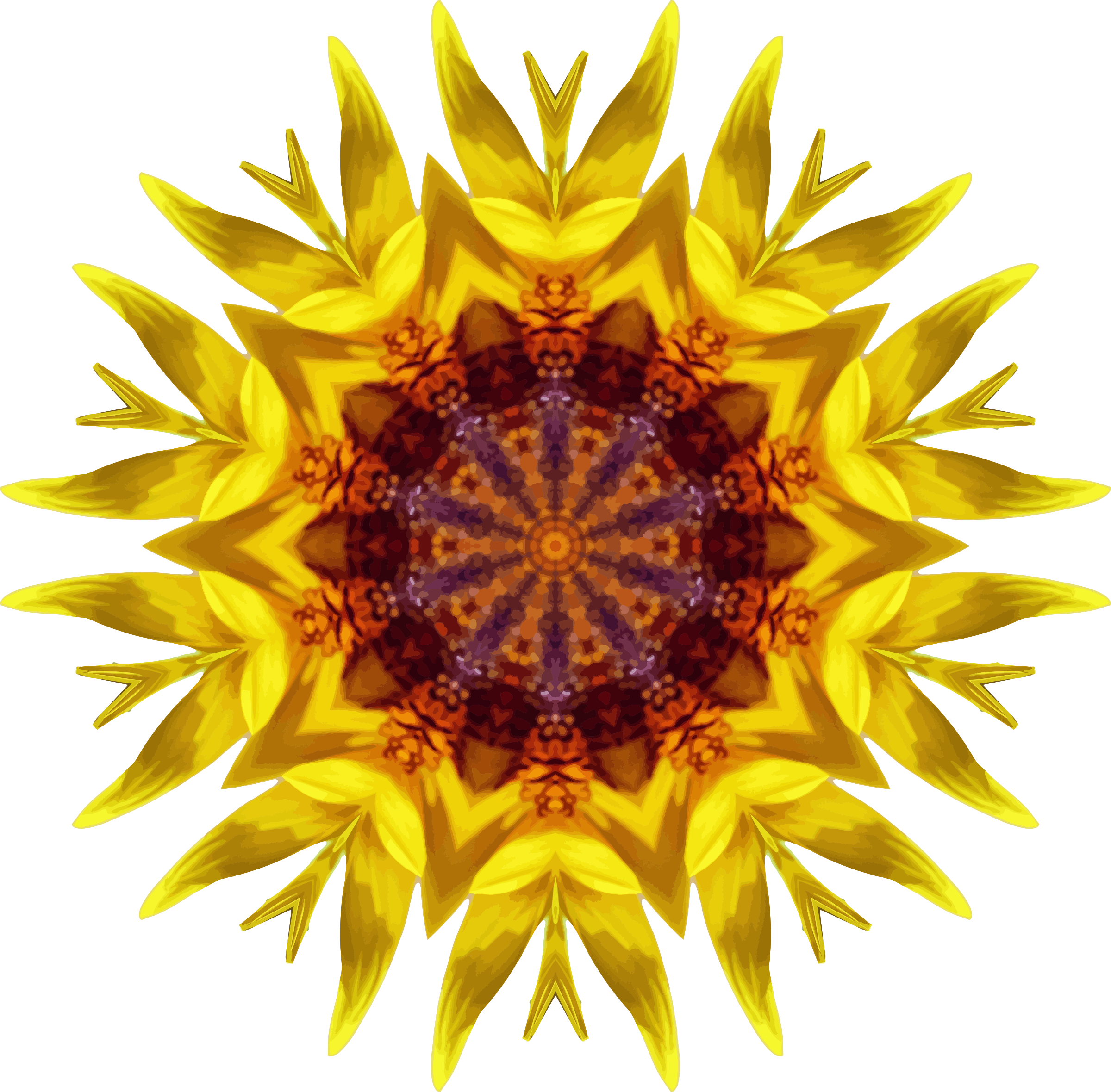 Sunflower kaleidoscope 18 by Firkin