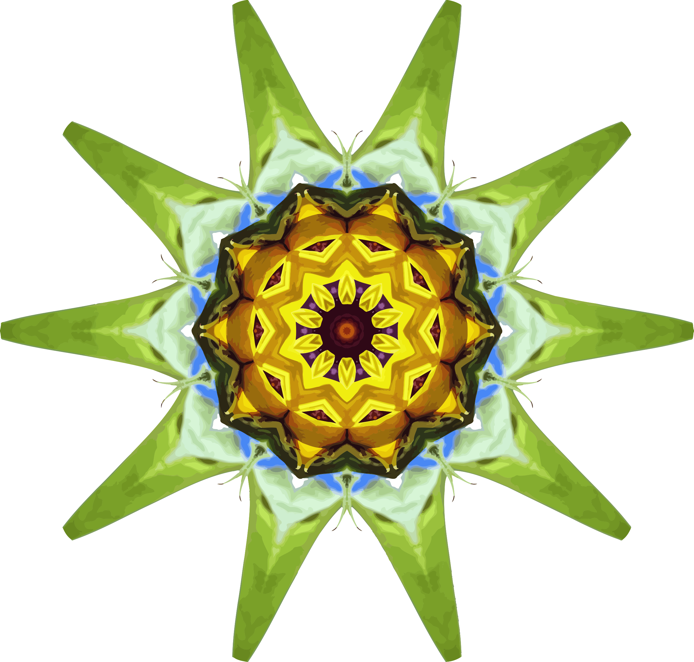 Sunflower kaleidoscope 20 by Firkin