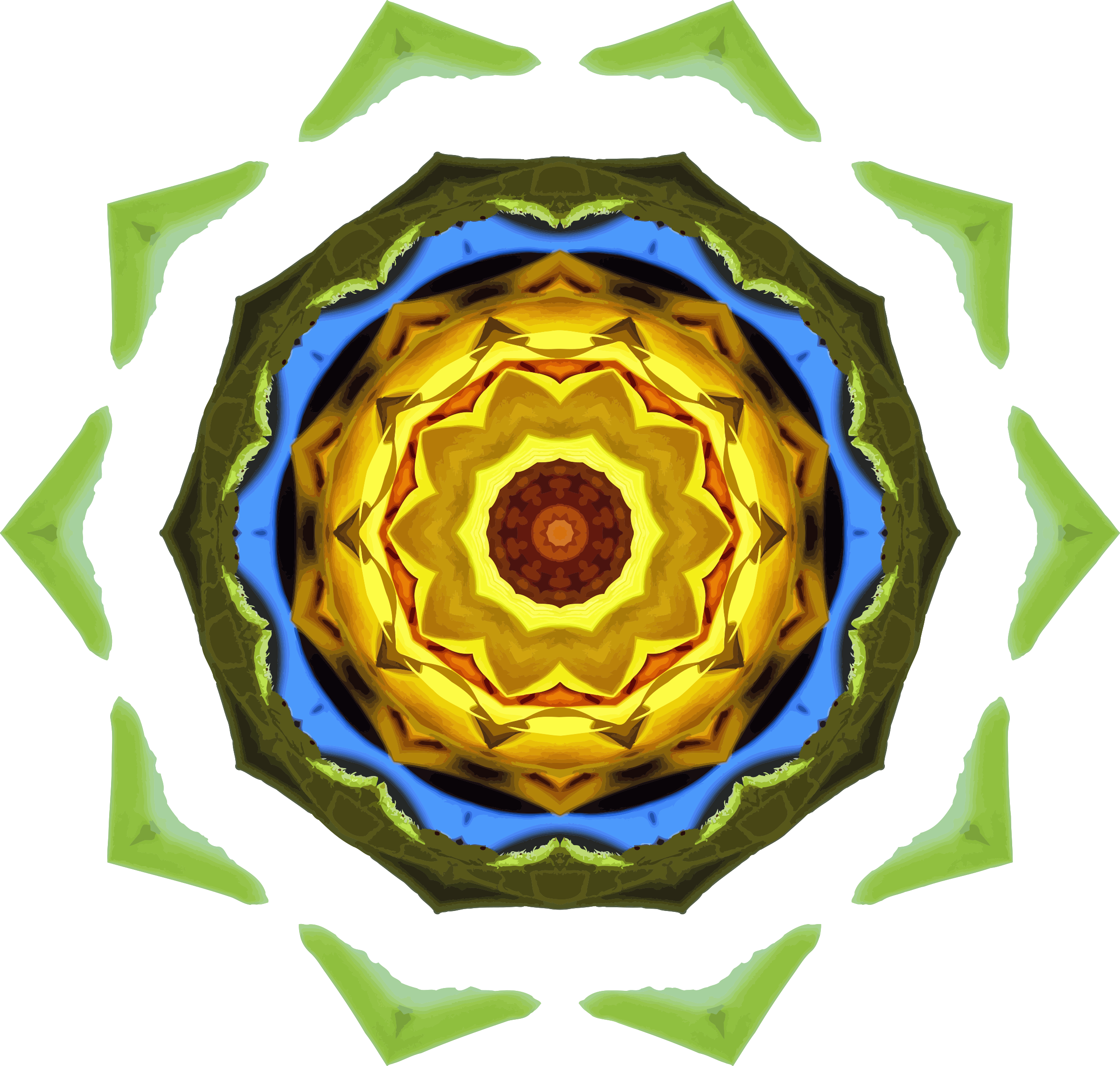 Sunflower kaleidoscope 23 by Firkin