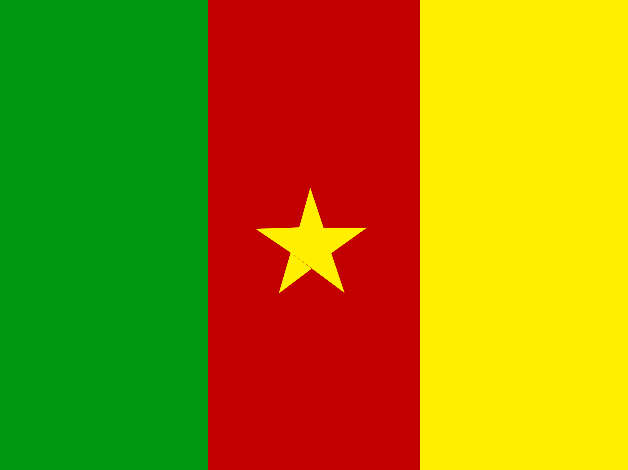 flag of Cameroon by Anonymous