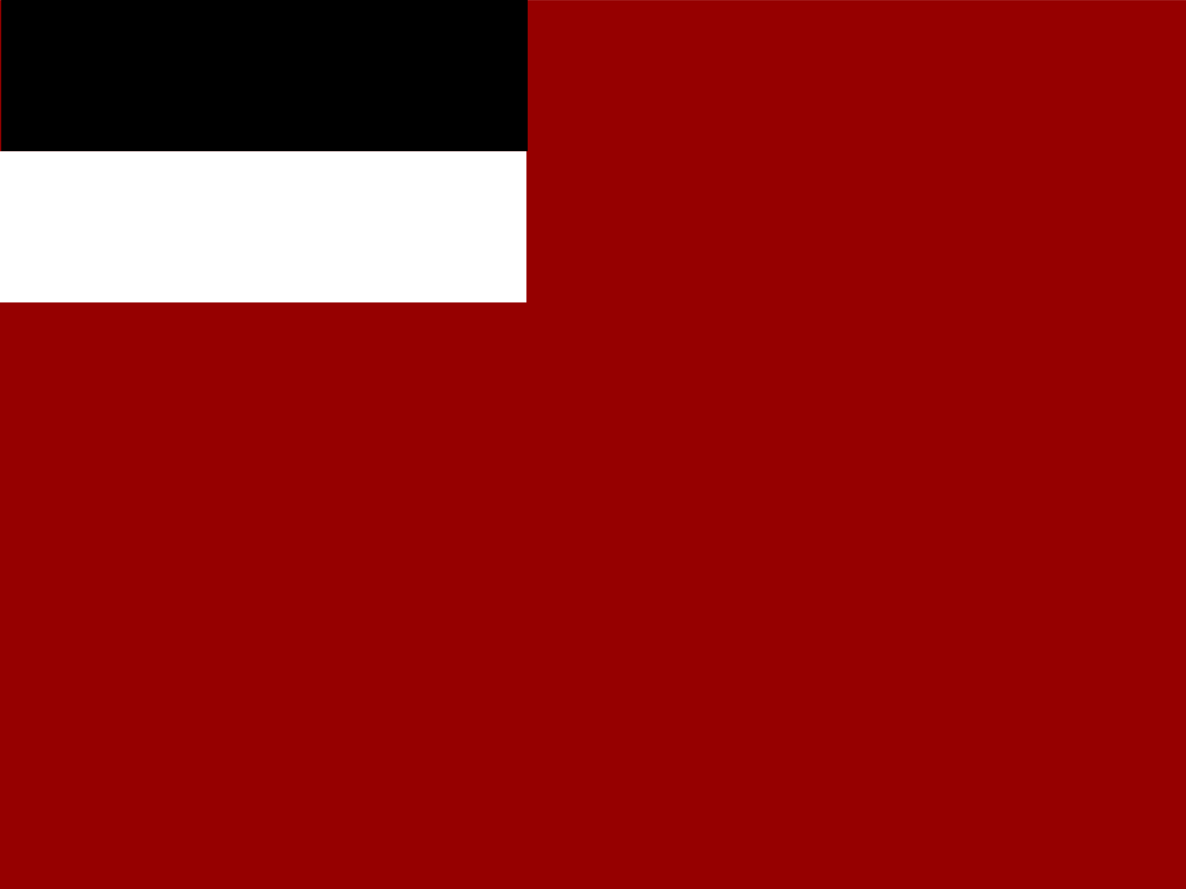 Georgia historic flag by Anonymous