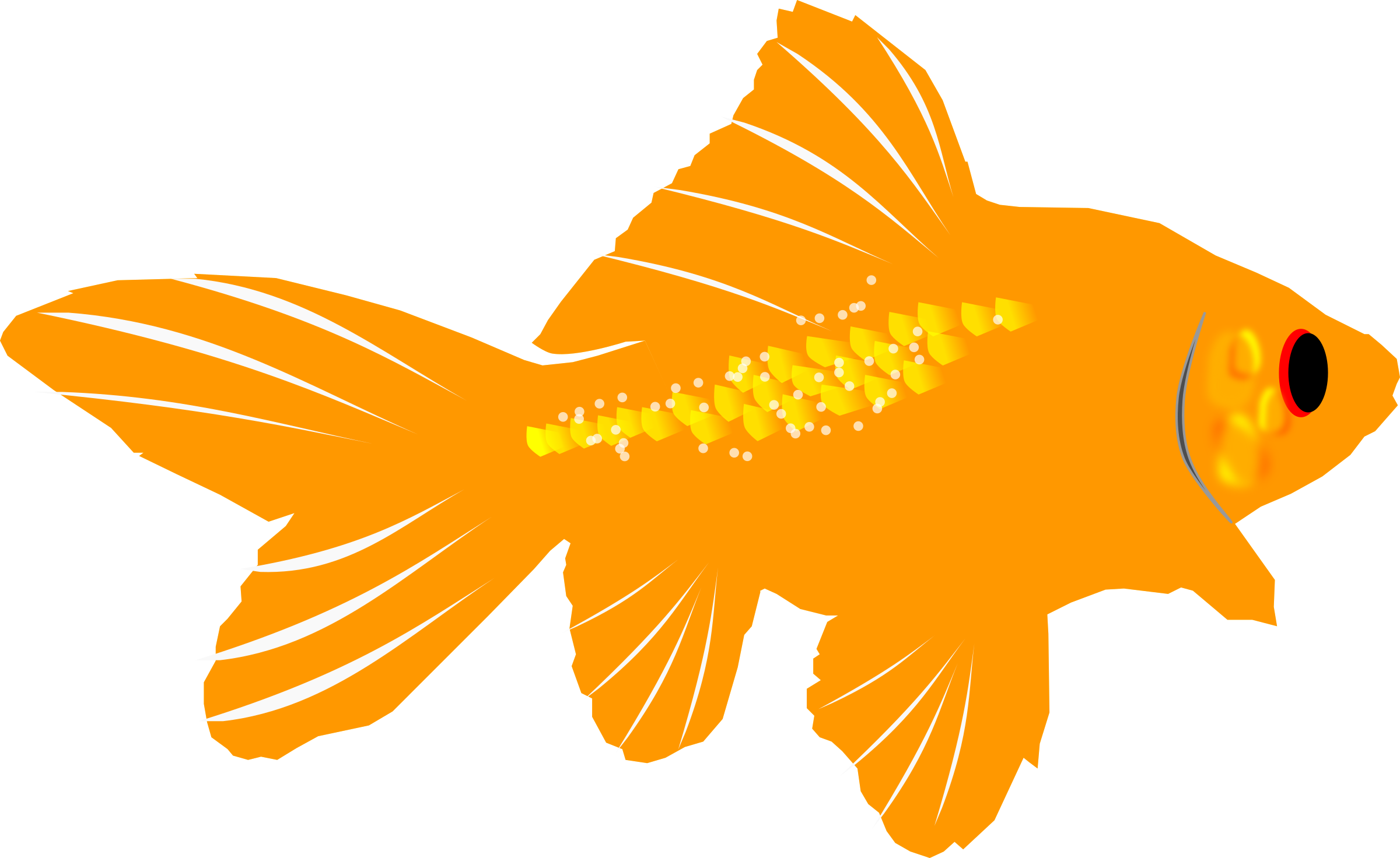 Goldfish by algotruneman