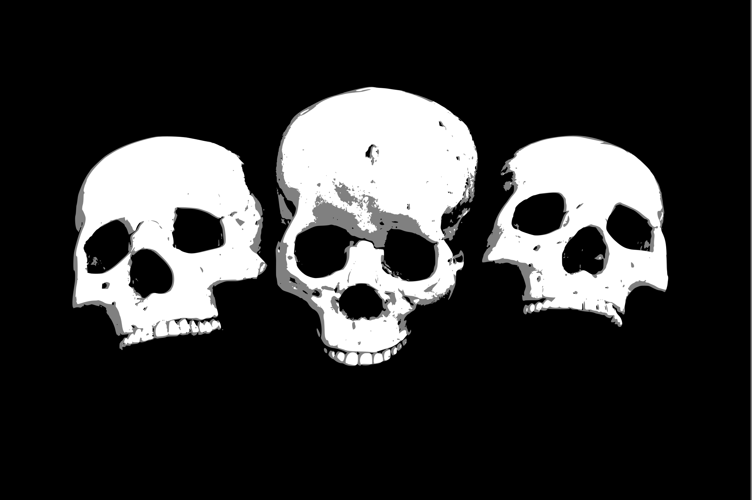 Three skulls by liftarn