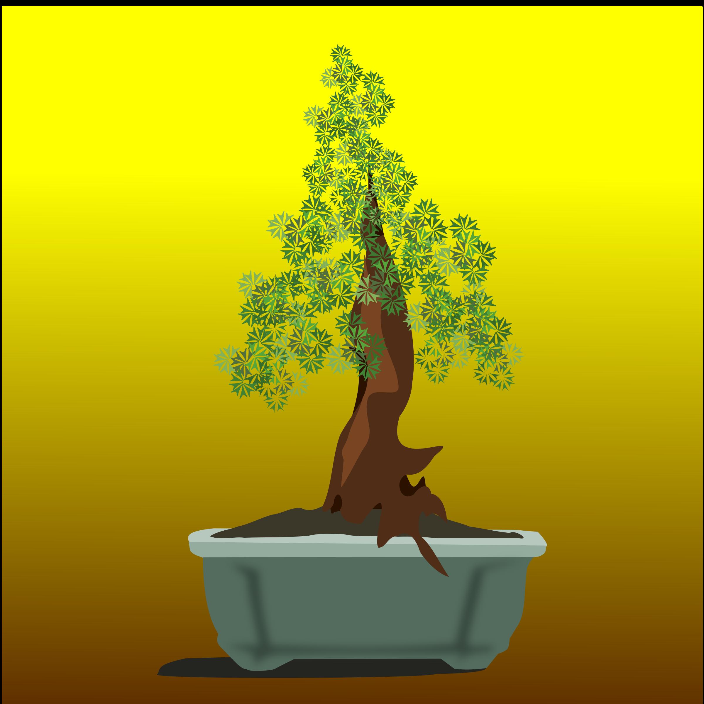 Clipart - bonsai-11