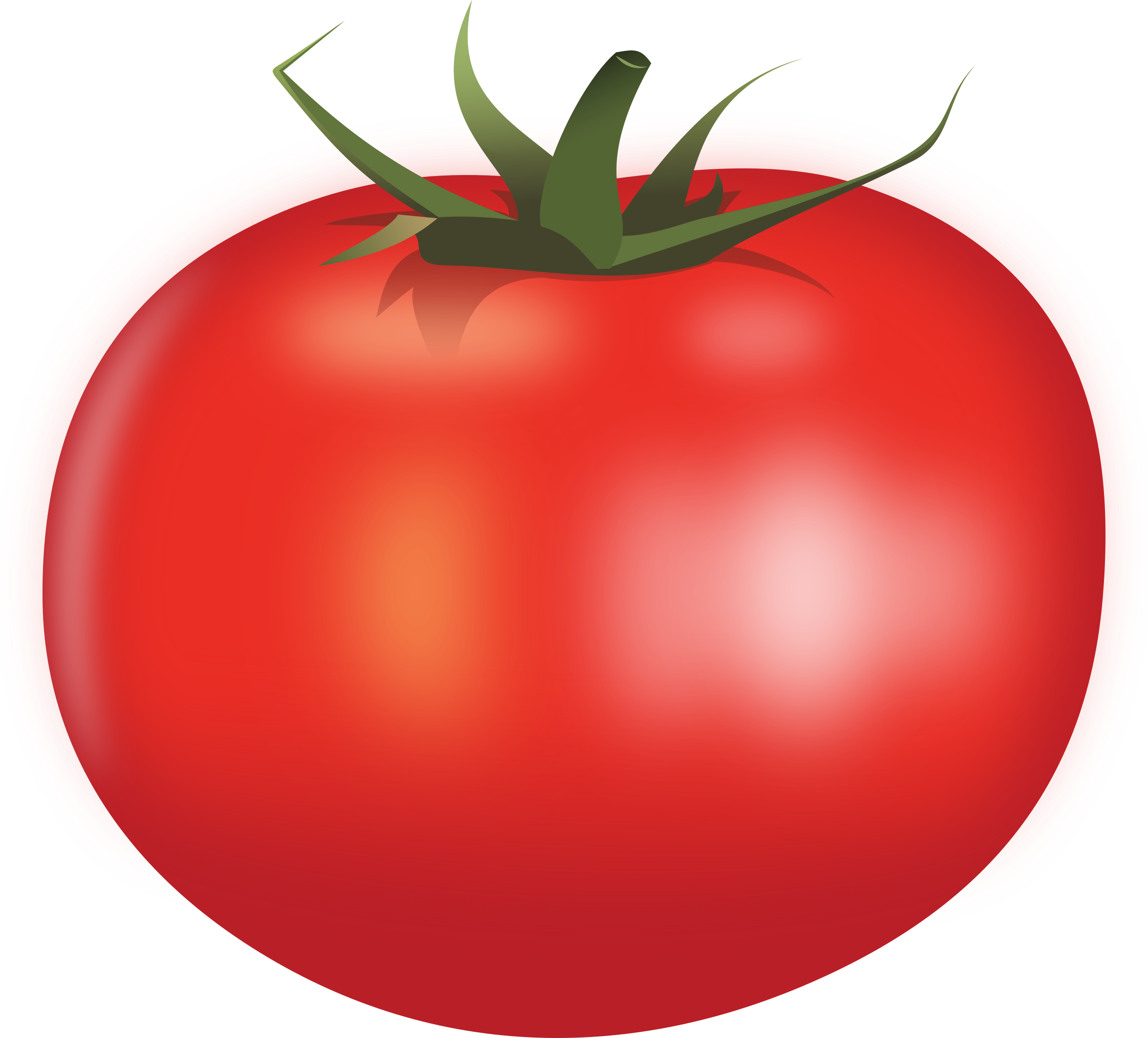 Tomato by Rones by rones