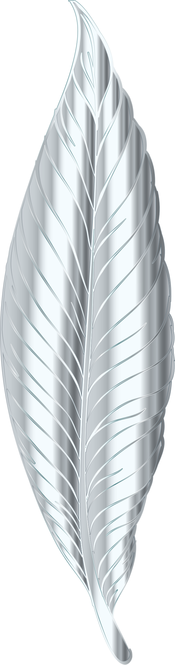 Silver Feather by GDJ