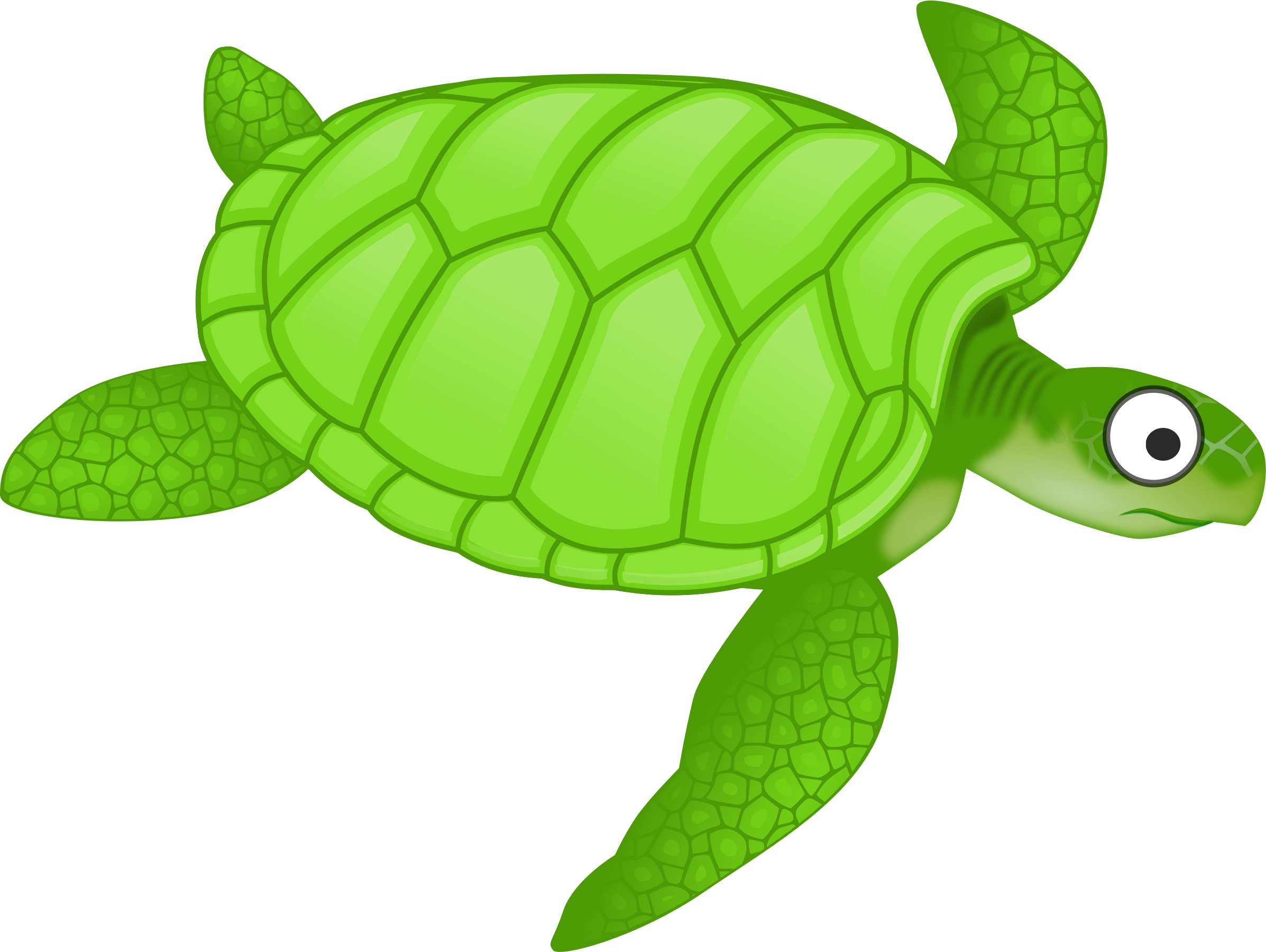 Clipart cartoon turtle 2 for Turtle fish games