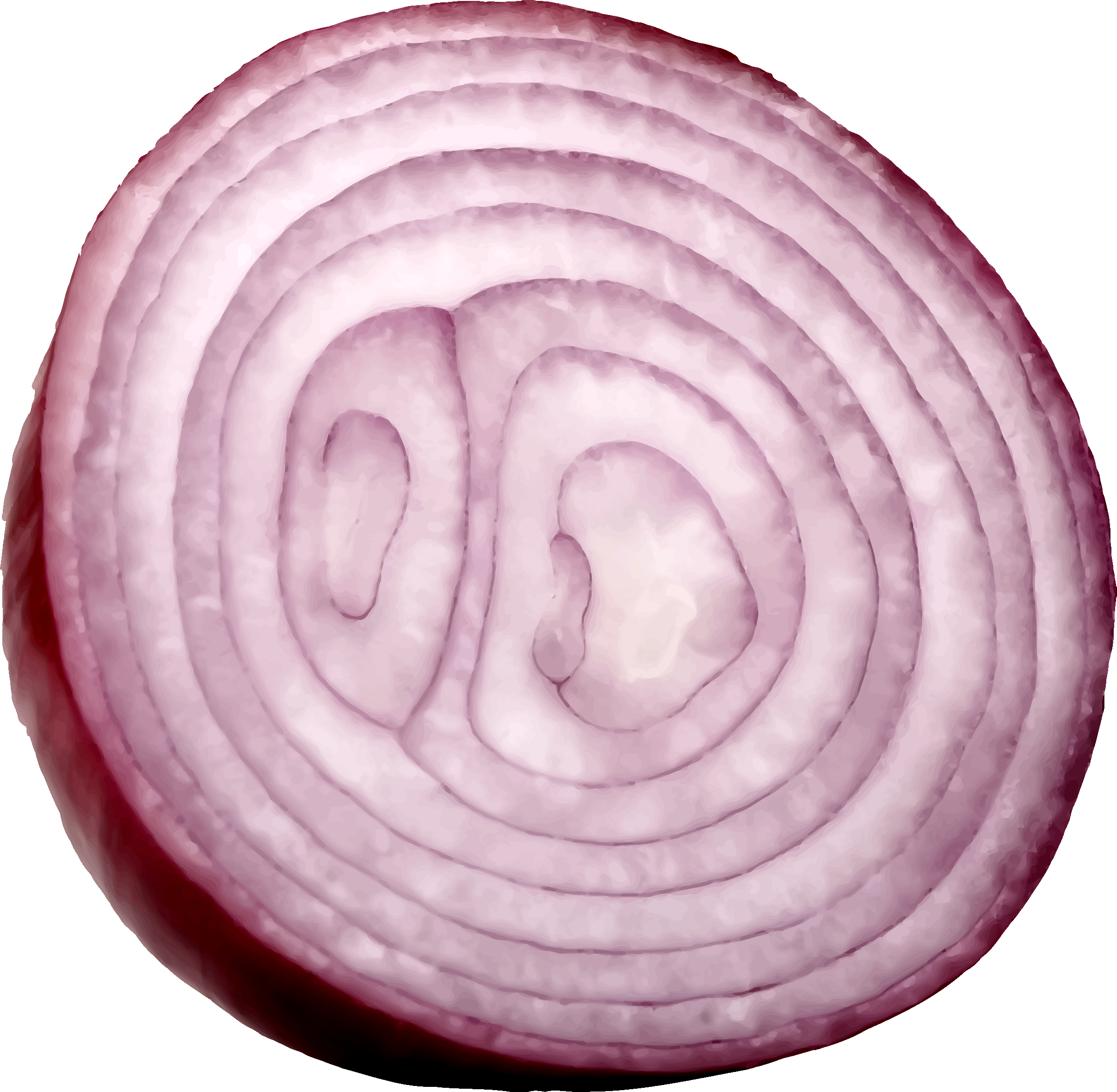 clipart cut red onion vegetable clip art free vegetables clip art free download