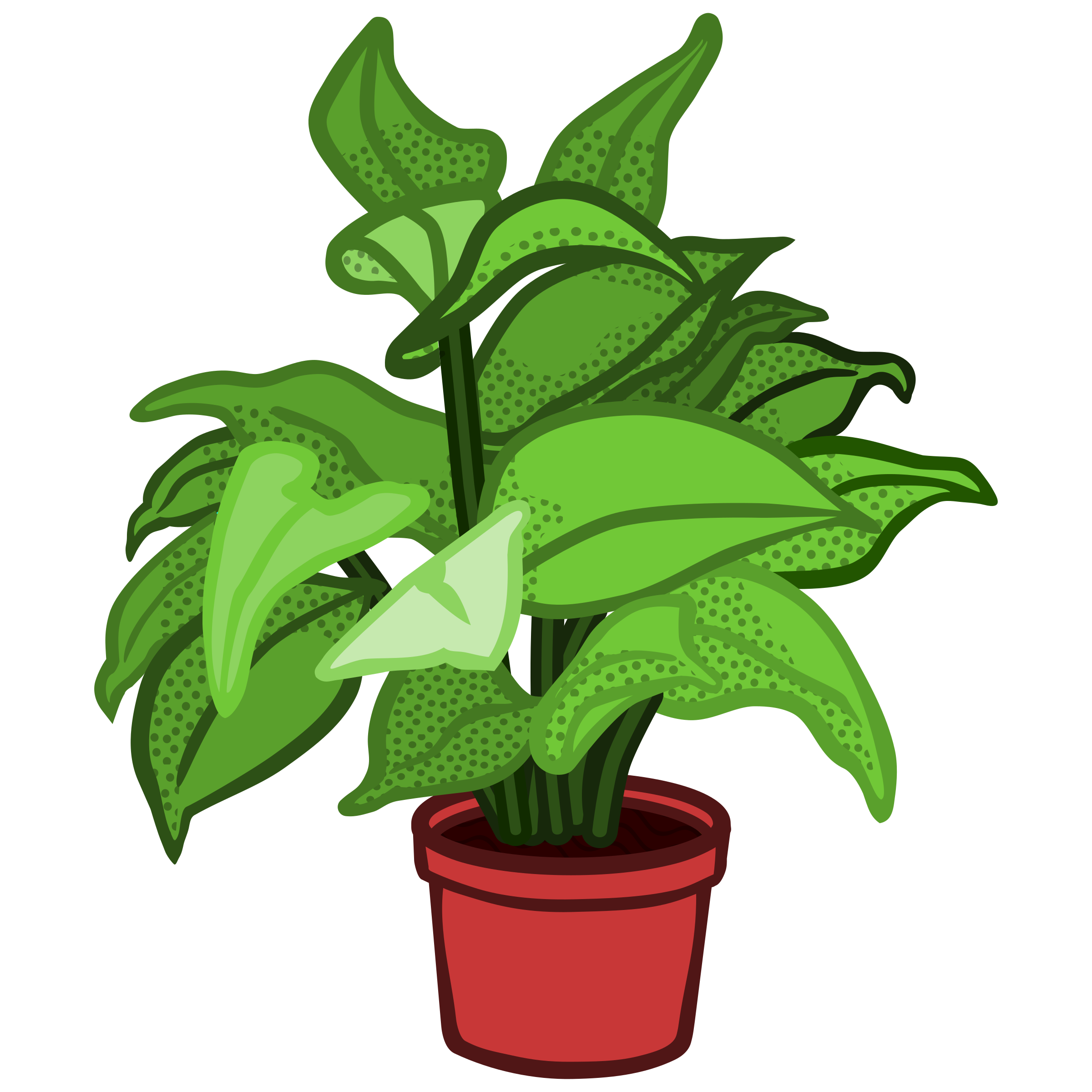 potted plant - coloured by frankes
