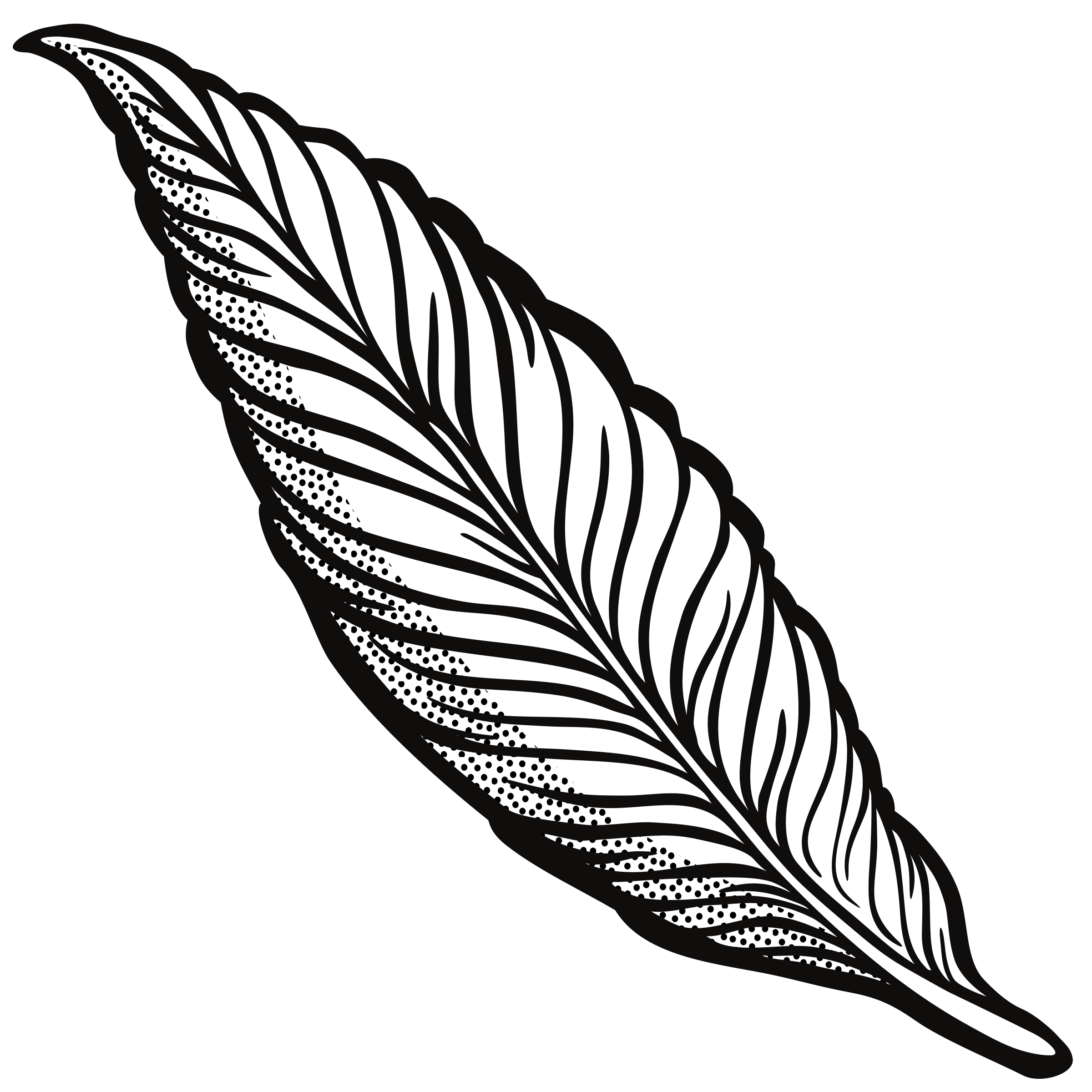 feather - lineart by frankes