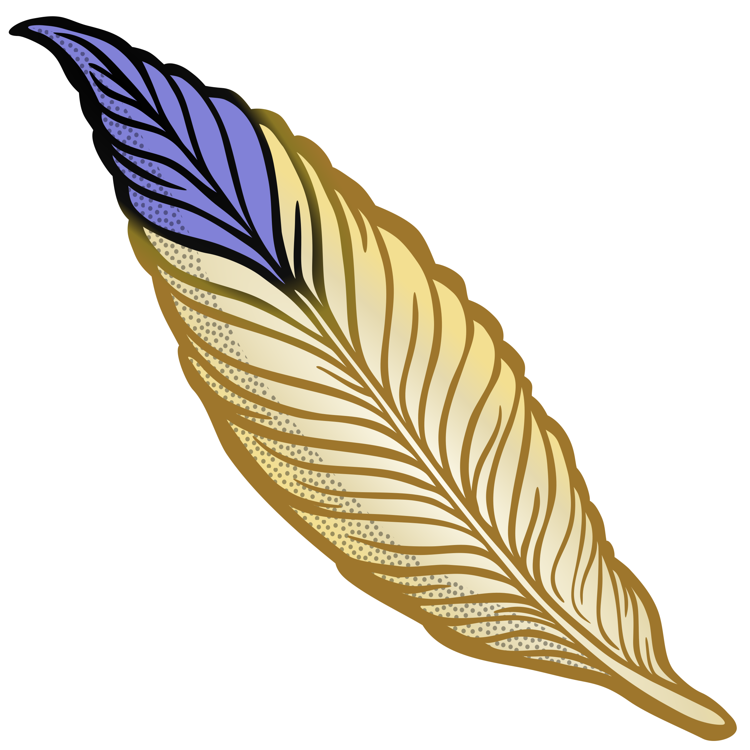 feather - coloured by frankes