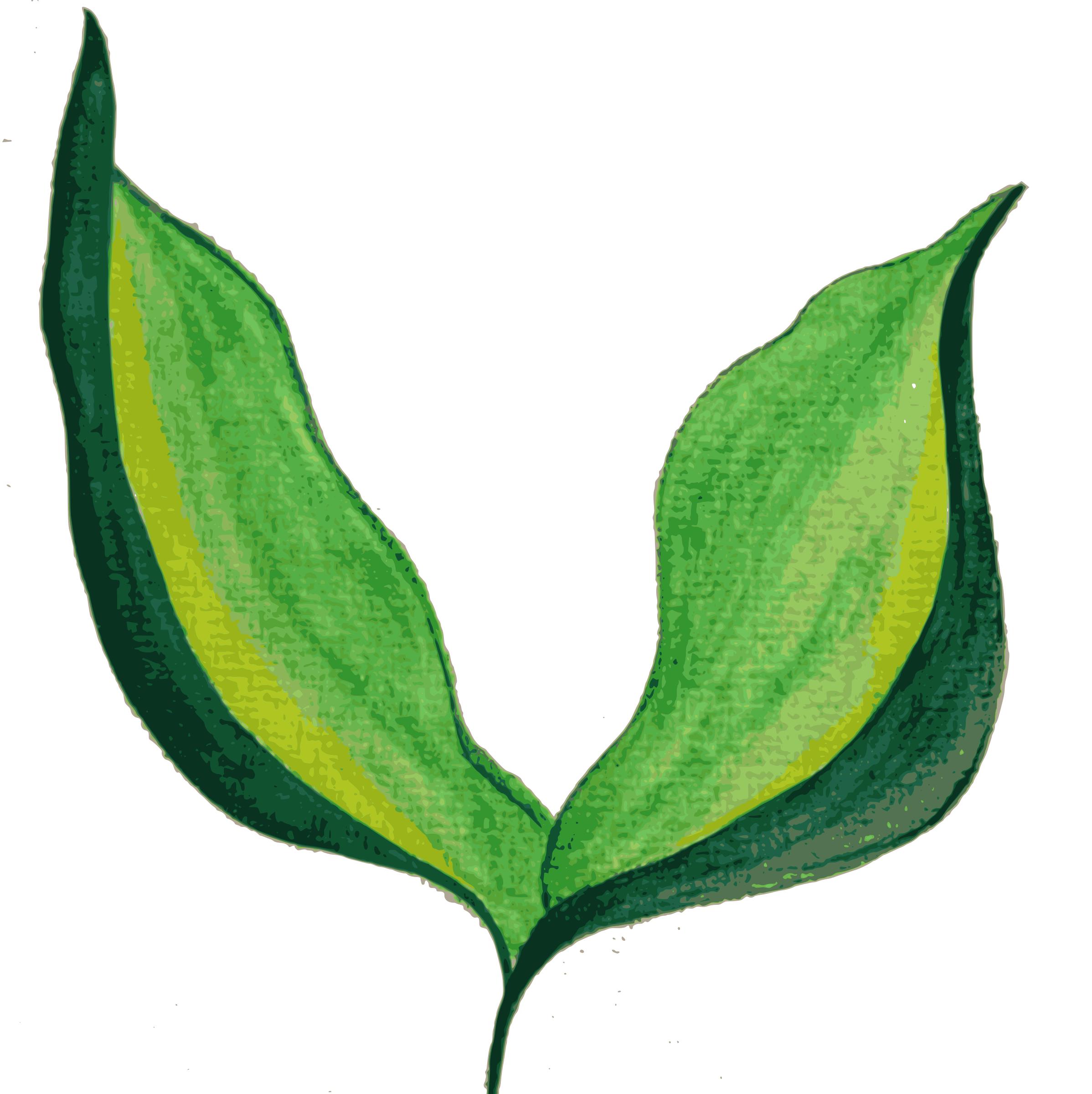 Painted Leaves (remixed), background-devoid. by oldifluff