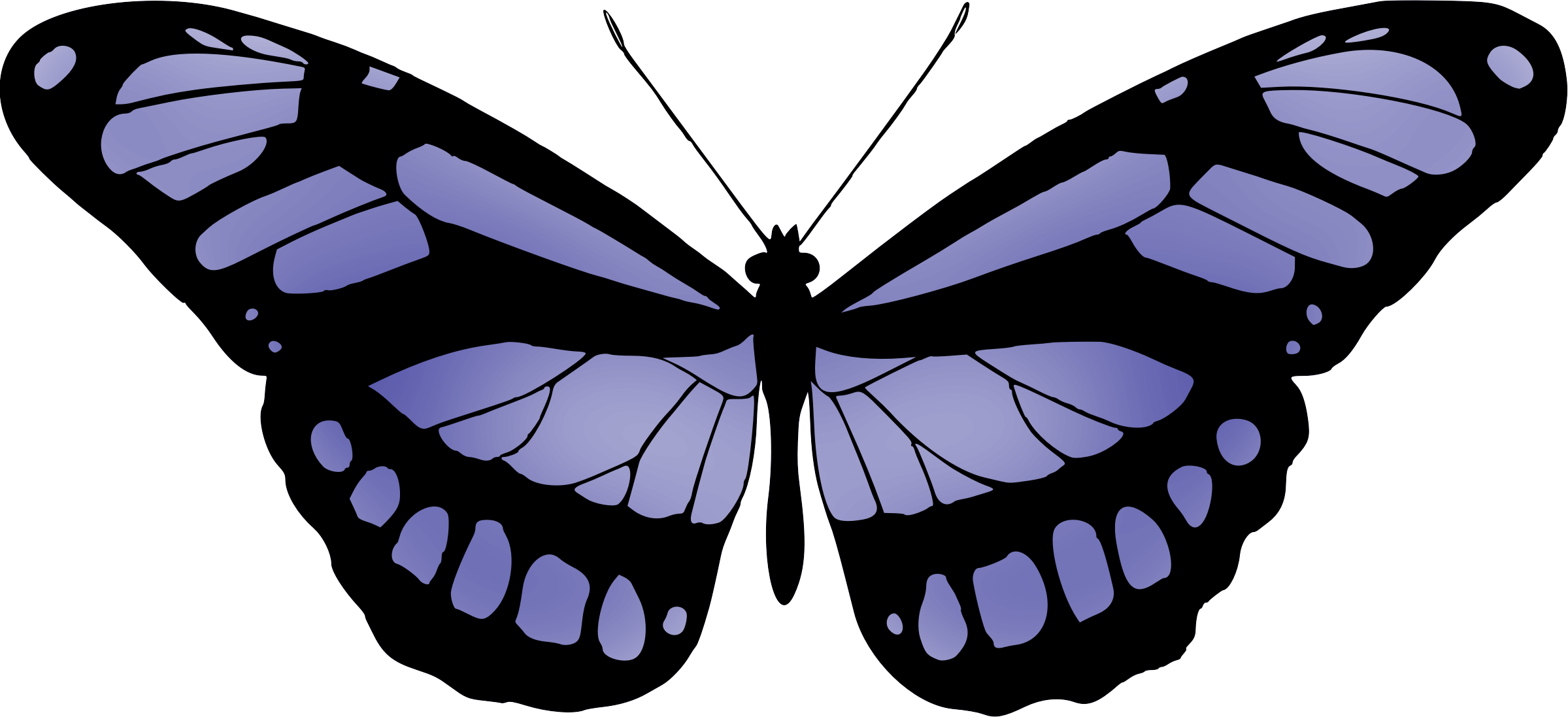 Butterfly 15 (blue) by Firkin
