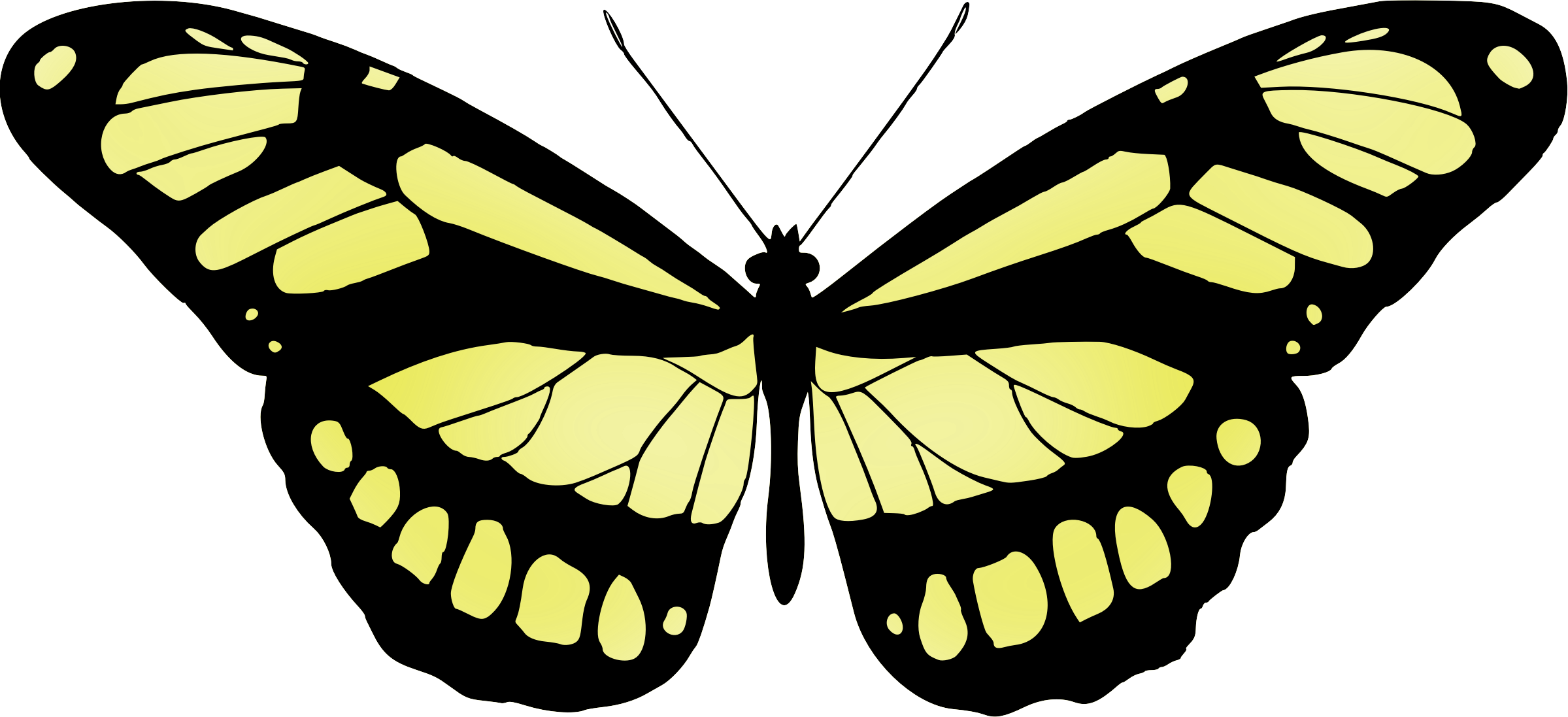 Butterfly 15 (yellow) by Firkin