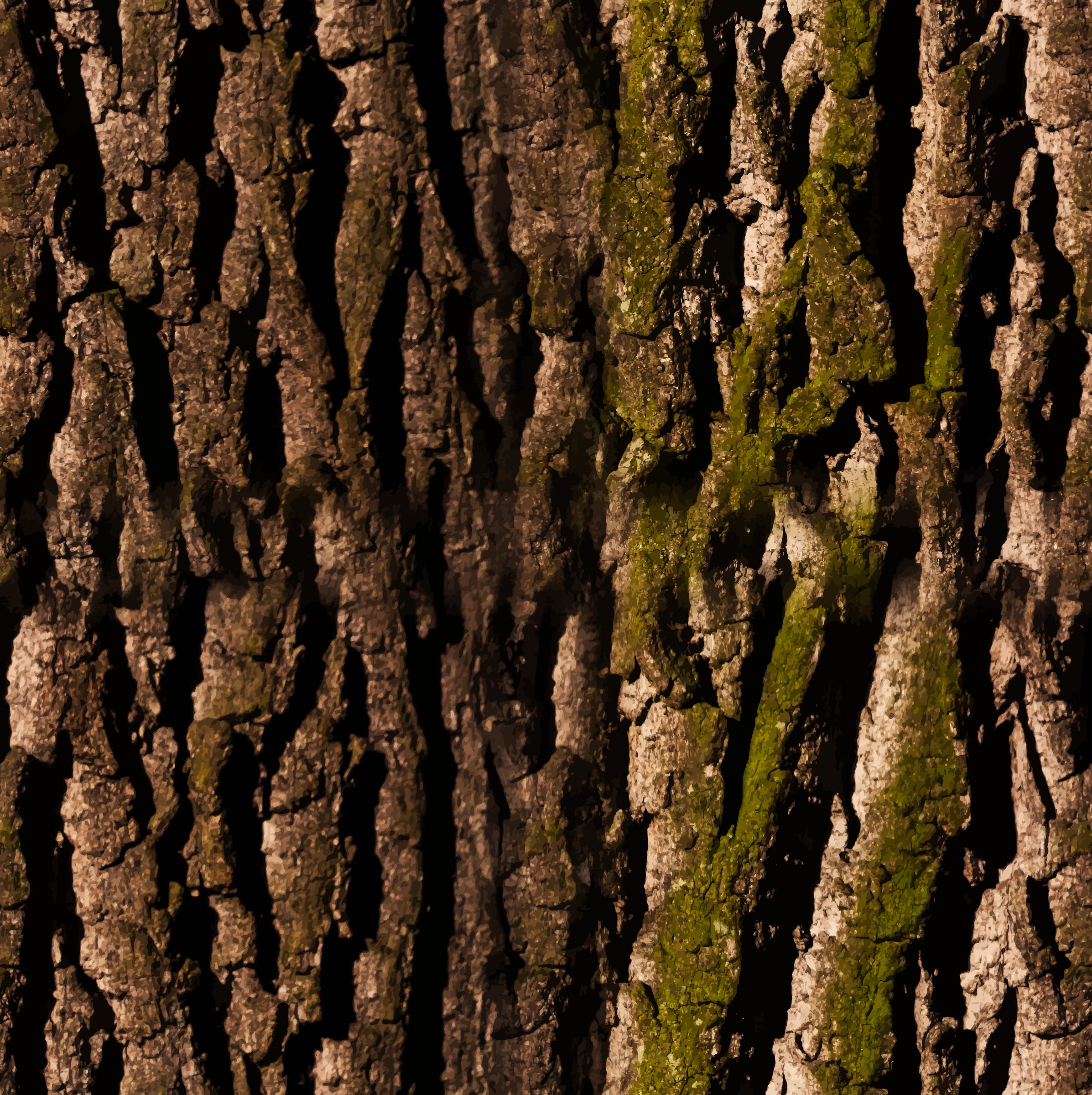 Bark 2 seamless texture by Firkin