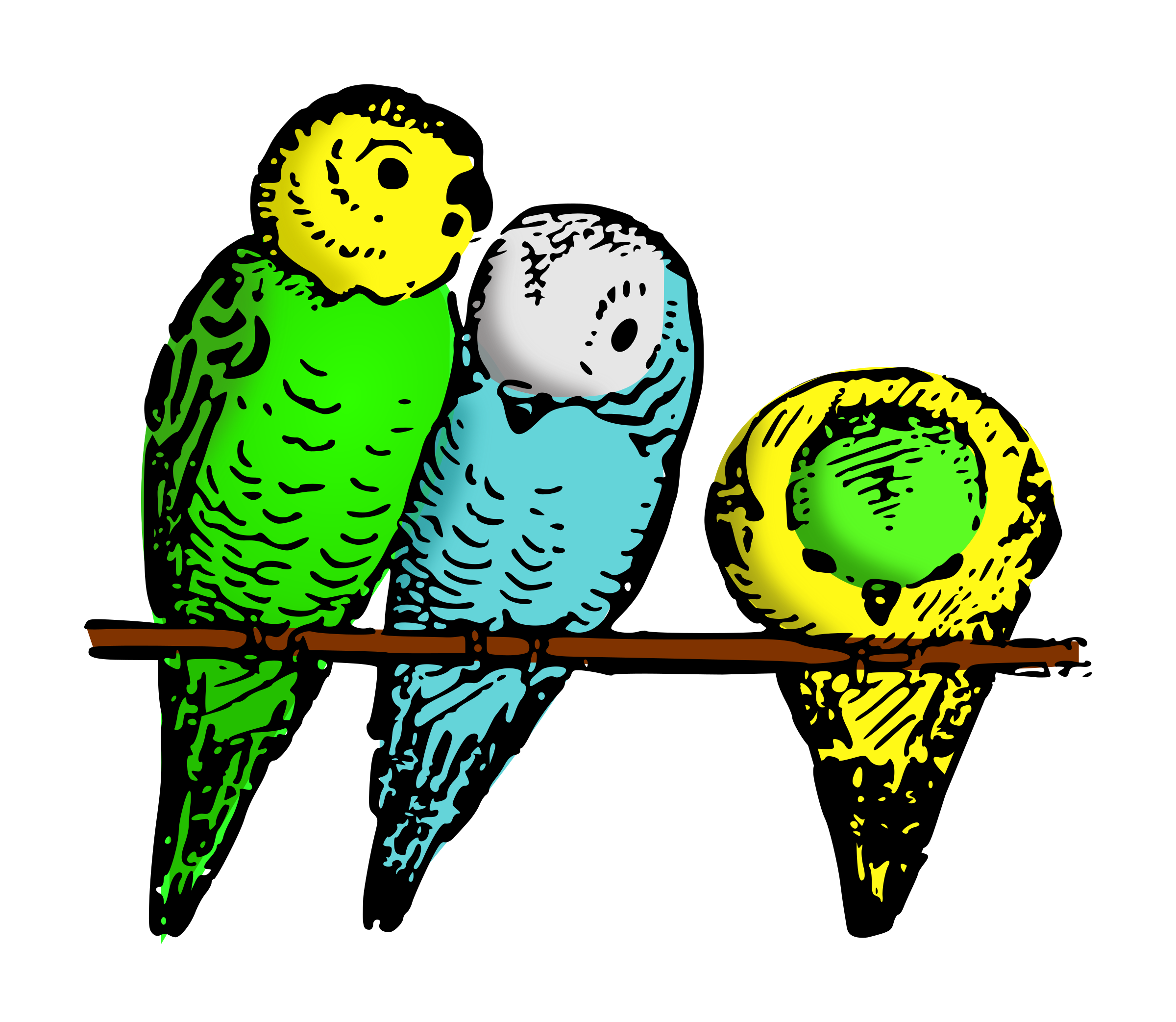 Lutz - parakeets colored by pitr