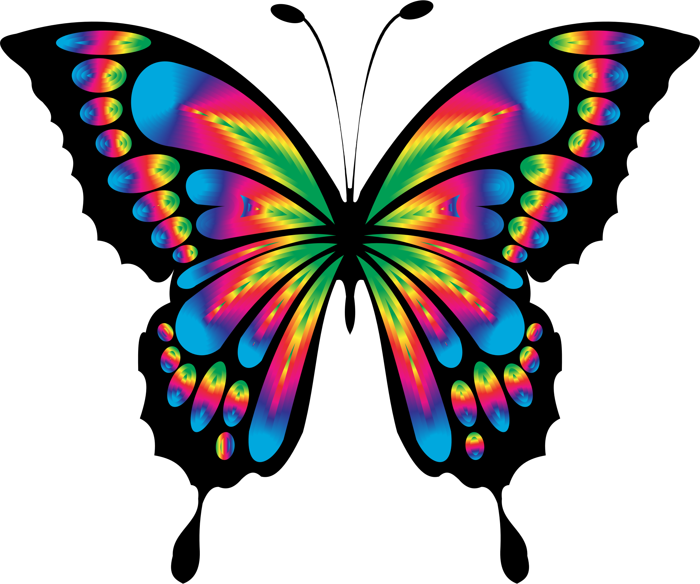 Prismatic Butterfly Remix by GDJ