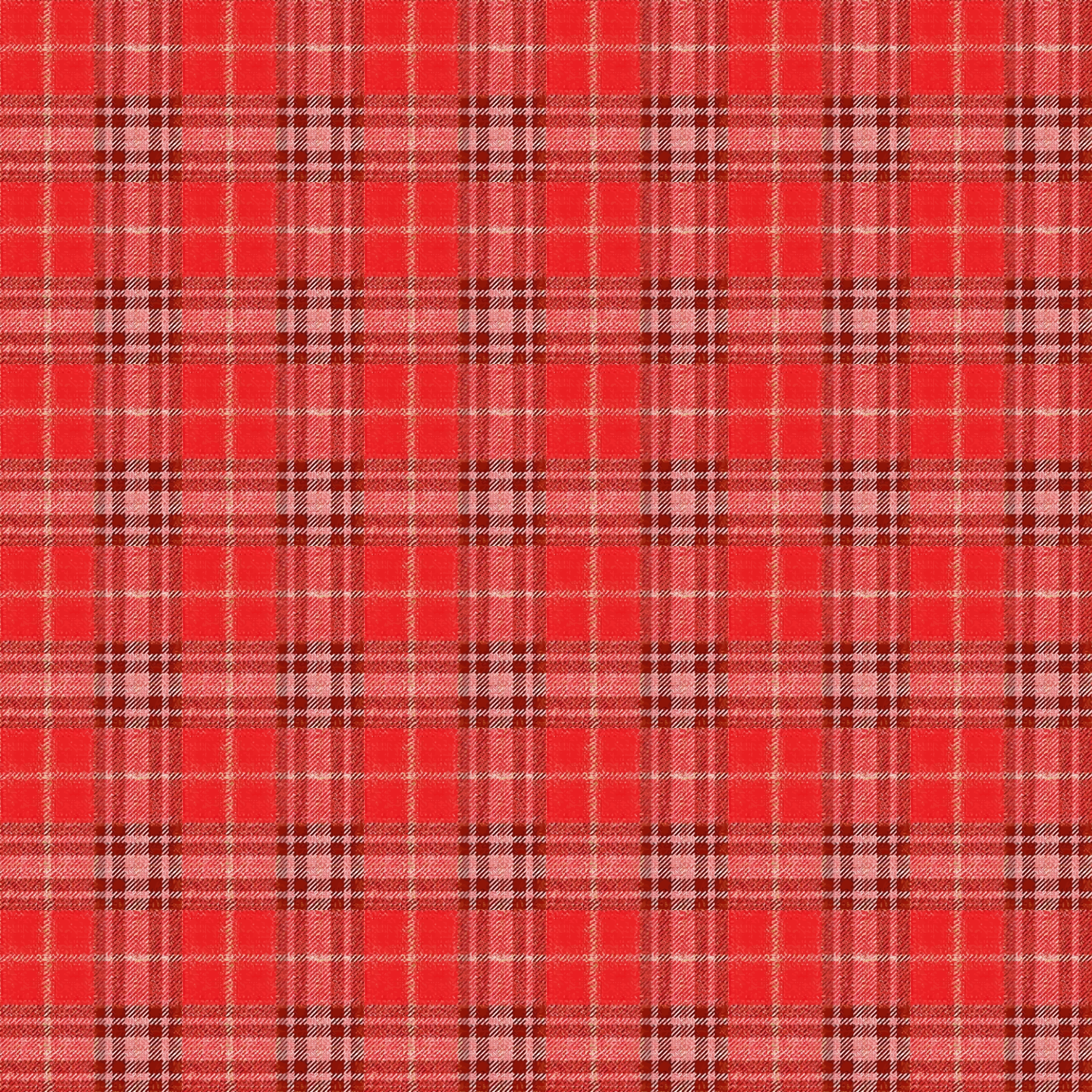 Chequered tablecloth 2 by Firkin