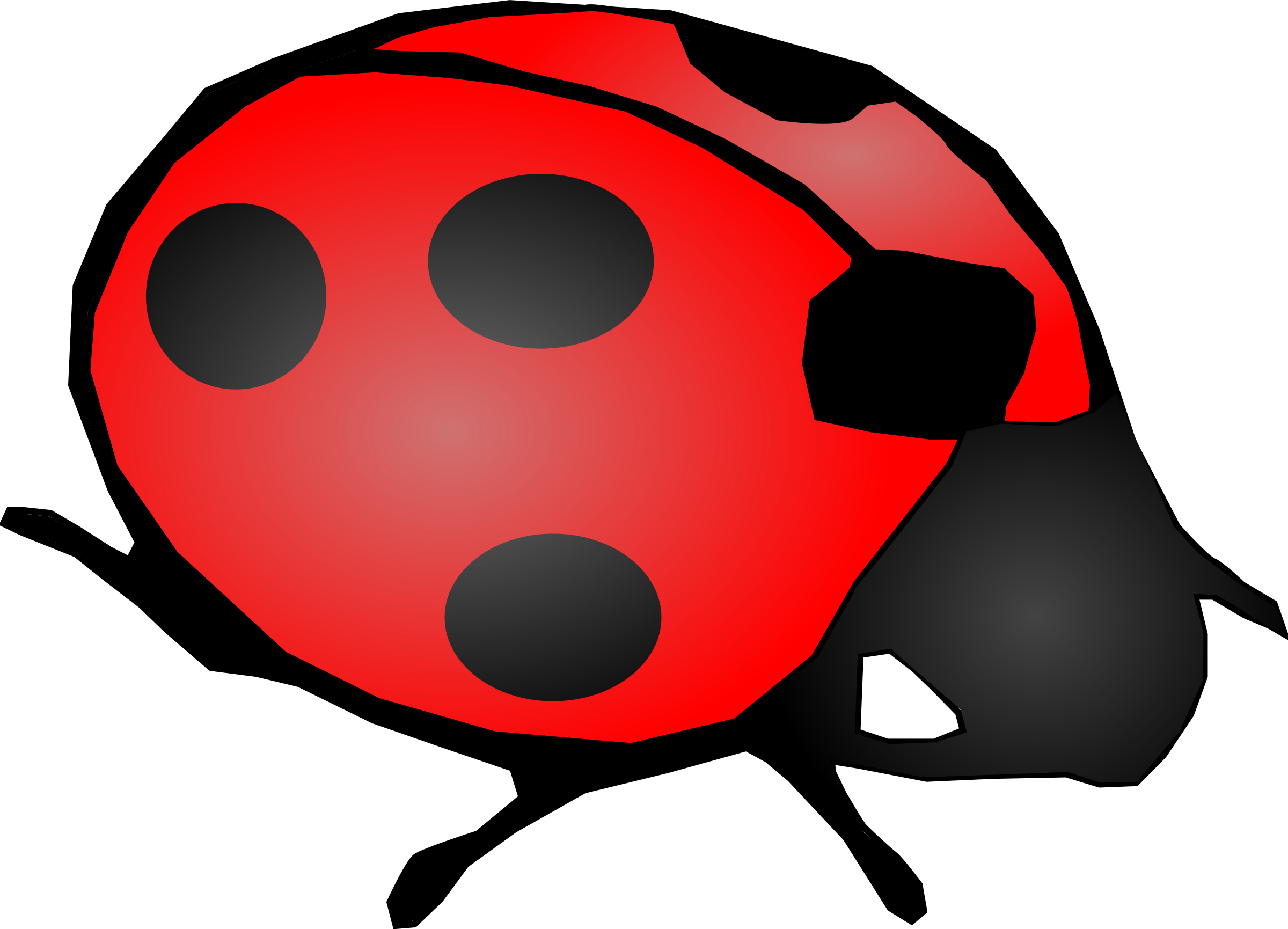 lady bug by Machovka