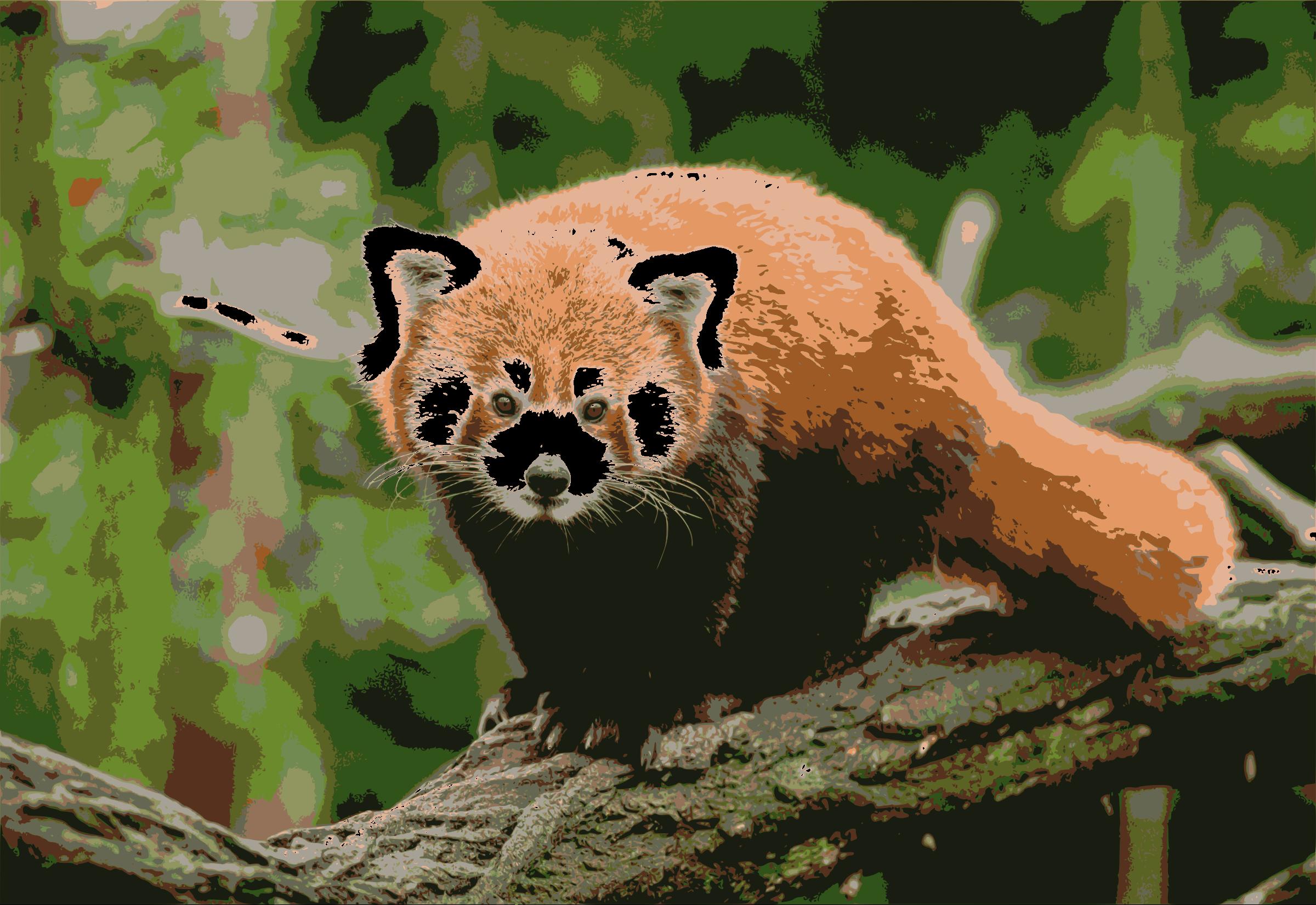 Red Panda by j4p4n