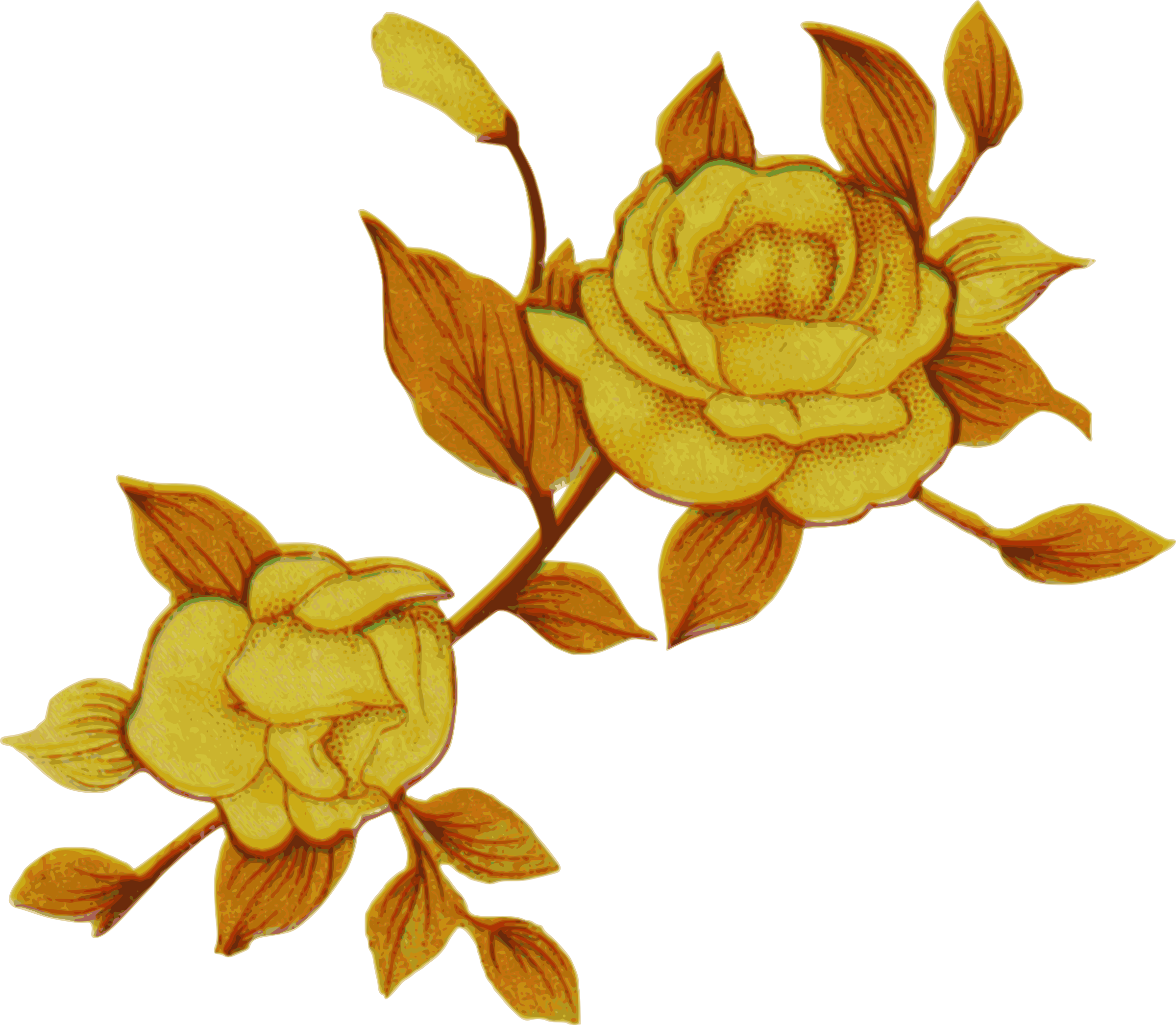 Clipart Yellow Flowers