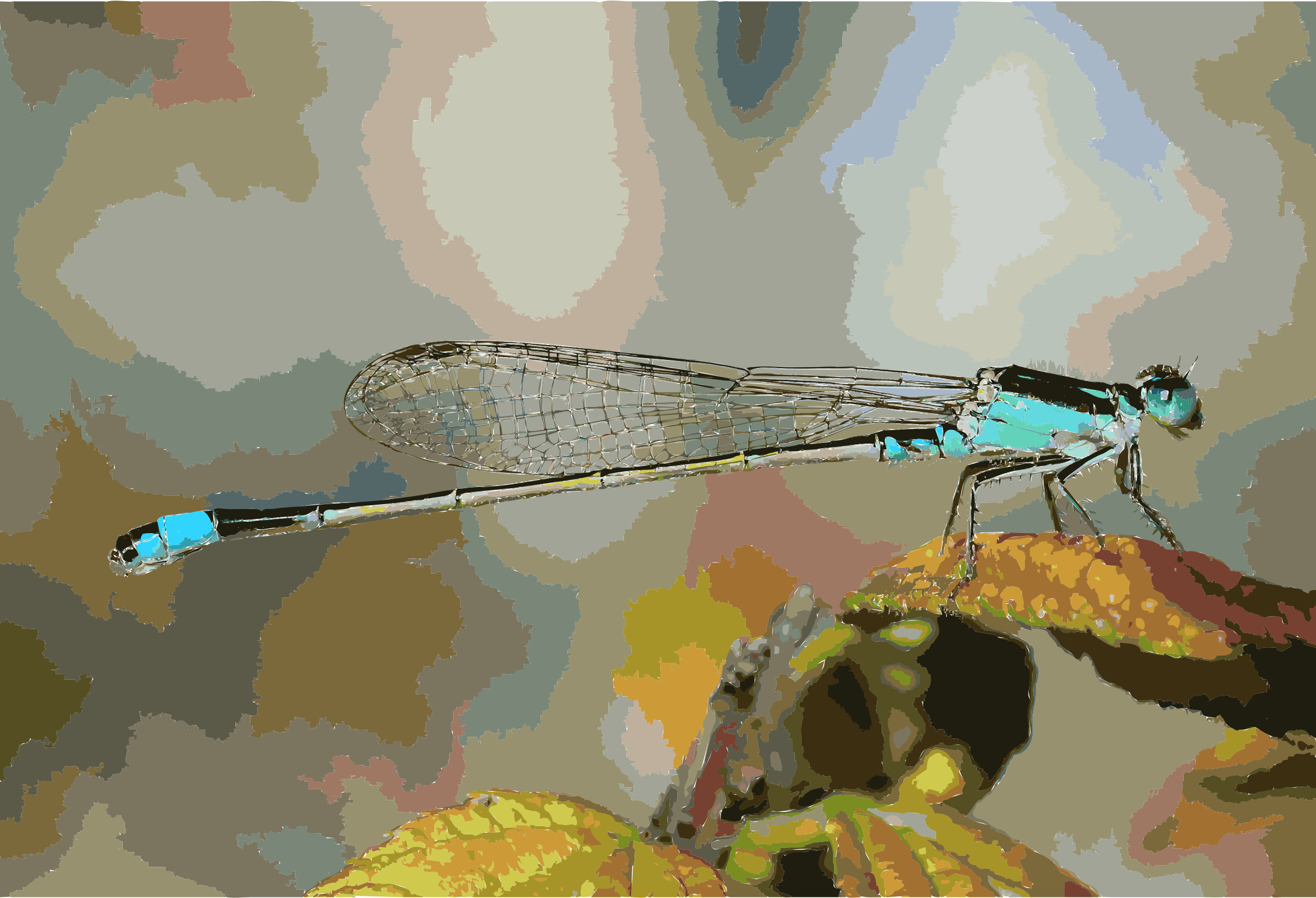 Damselfly October 2007 Osaka Japan by 5m3aif+1mxpwegrtz1po