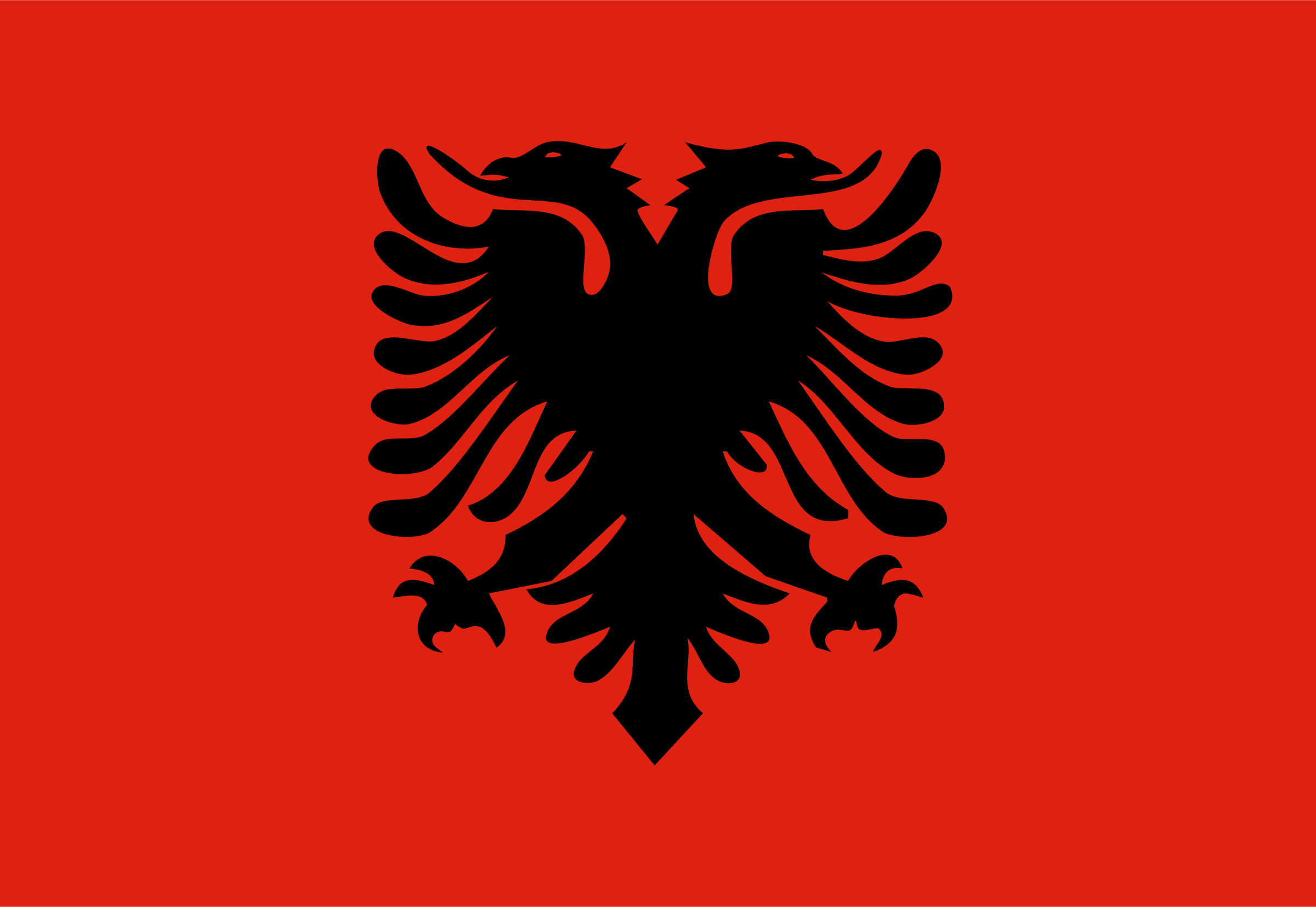 Flag of Albania by Anonymous