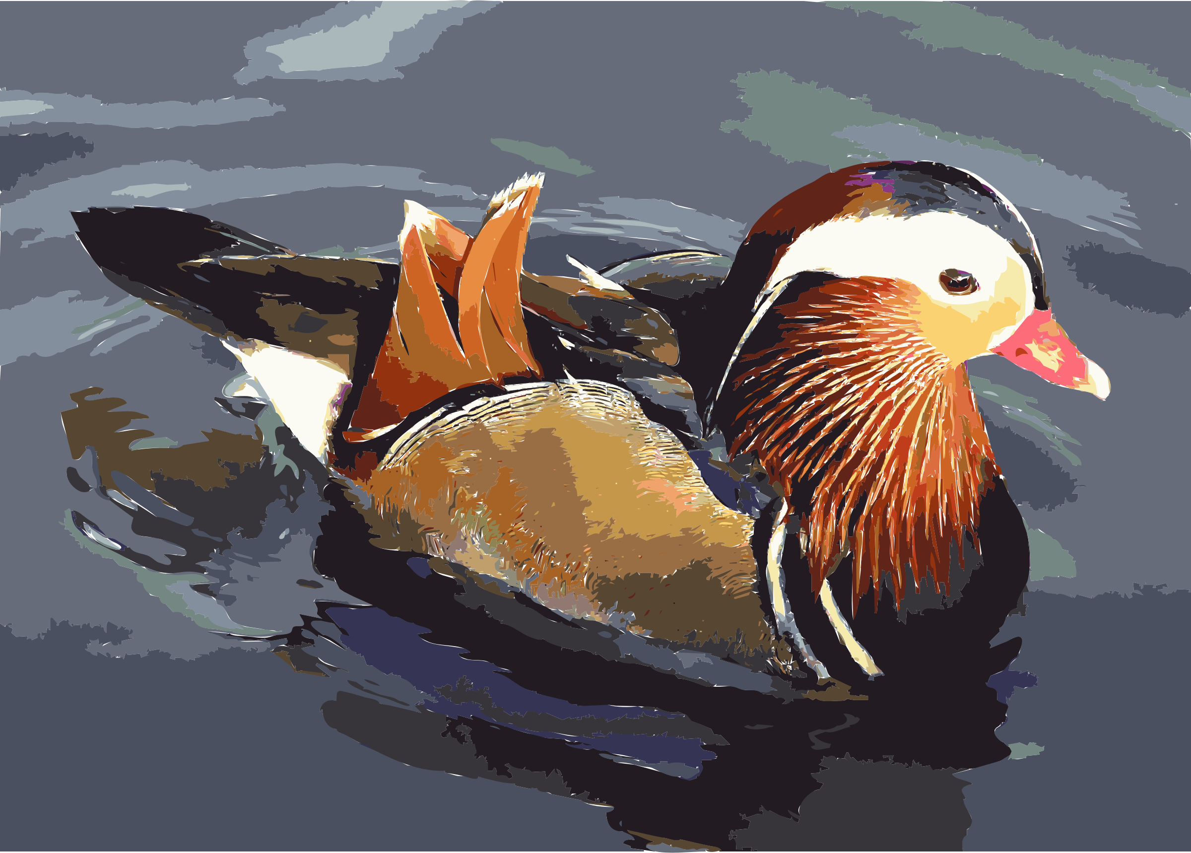 Mandarin.duck.arp by 5mcnth+58omk35zmzqms