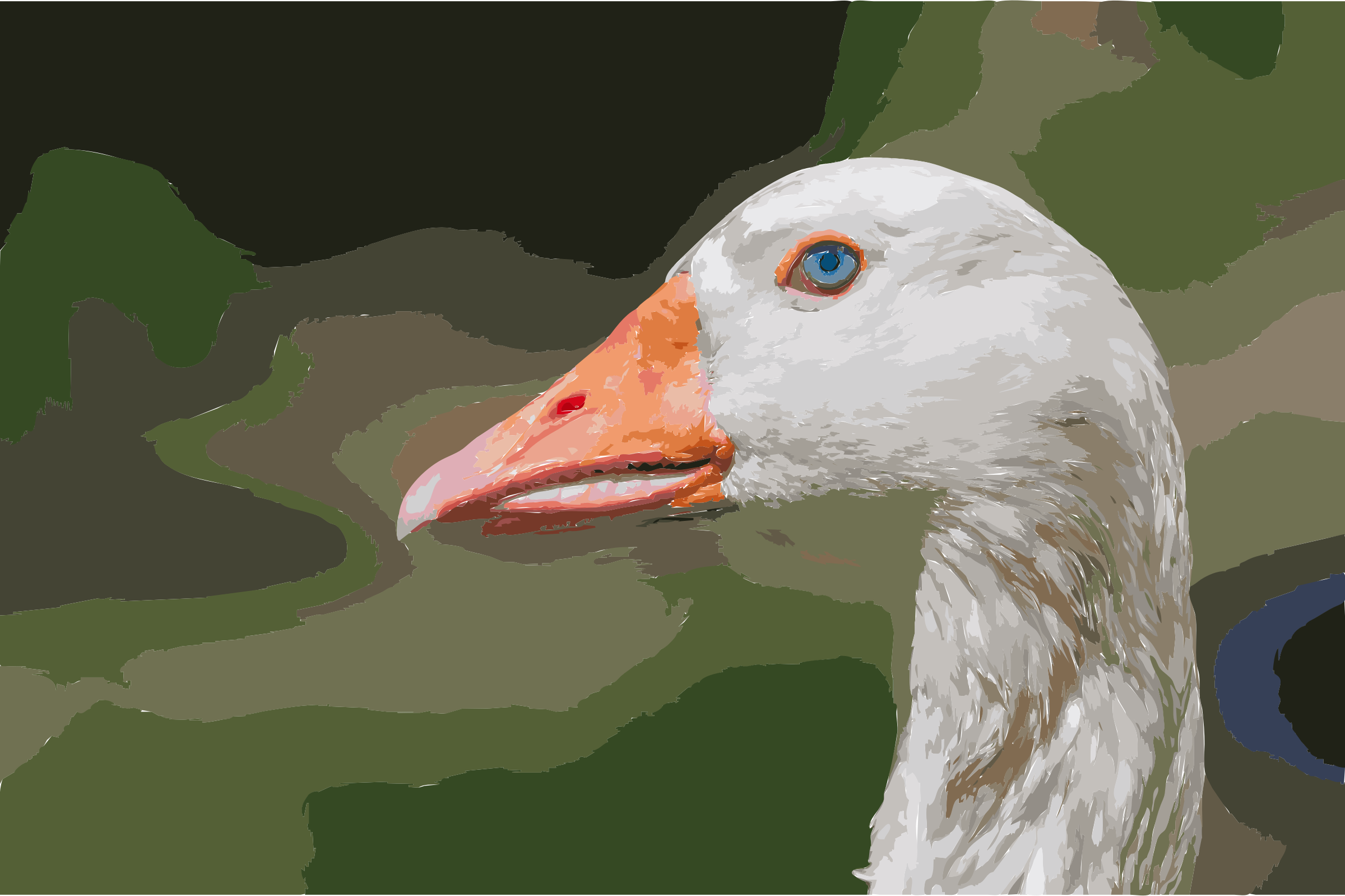Domesticated goose head, Chaguaramal, Venezuela by 5mcnth+58omk35zmzqms