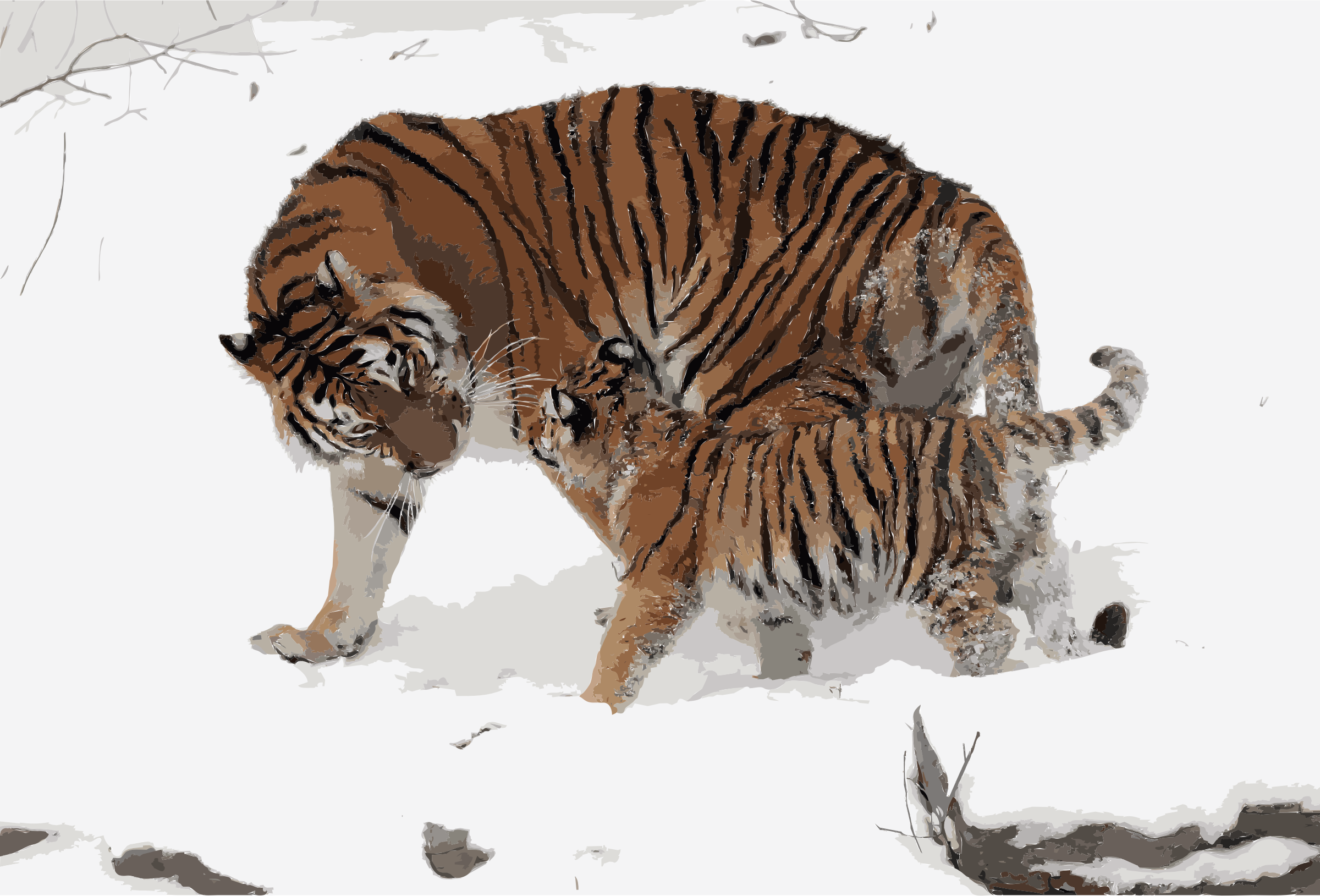 Panthera tigris altaica 13 - Buffalo Zoo by 5mdg5m+6nb2zzxa6i3qs